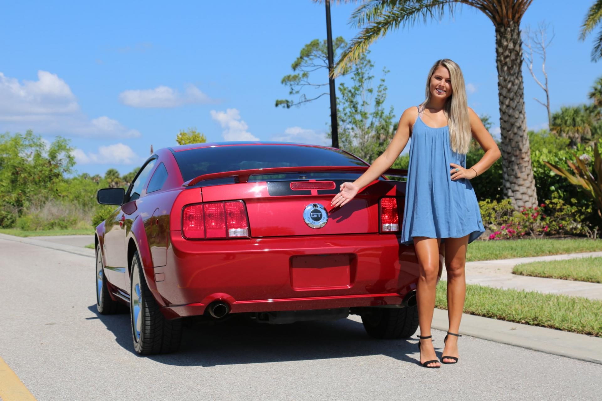 Used 2008 Ford  Mustang for sale $19,900 at Muscle Cars for Sale Inc. in Fort Myers FL 33912 5