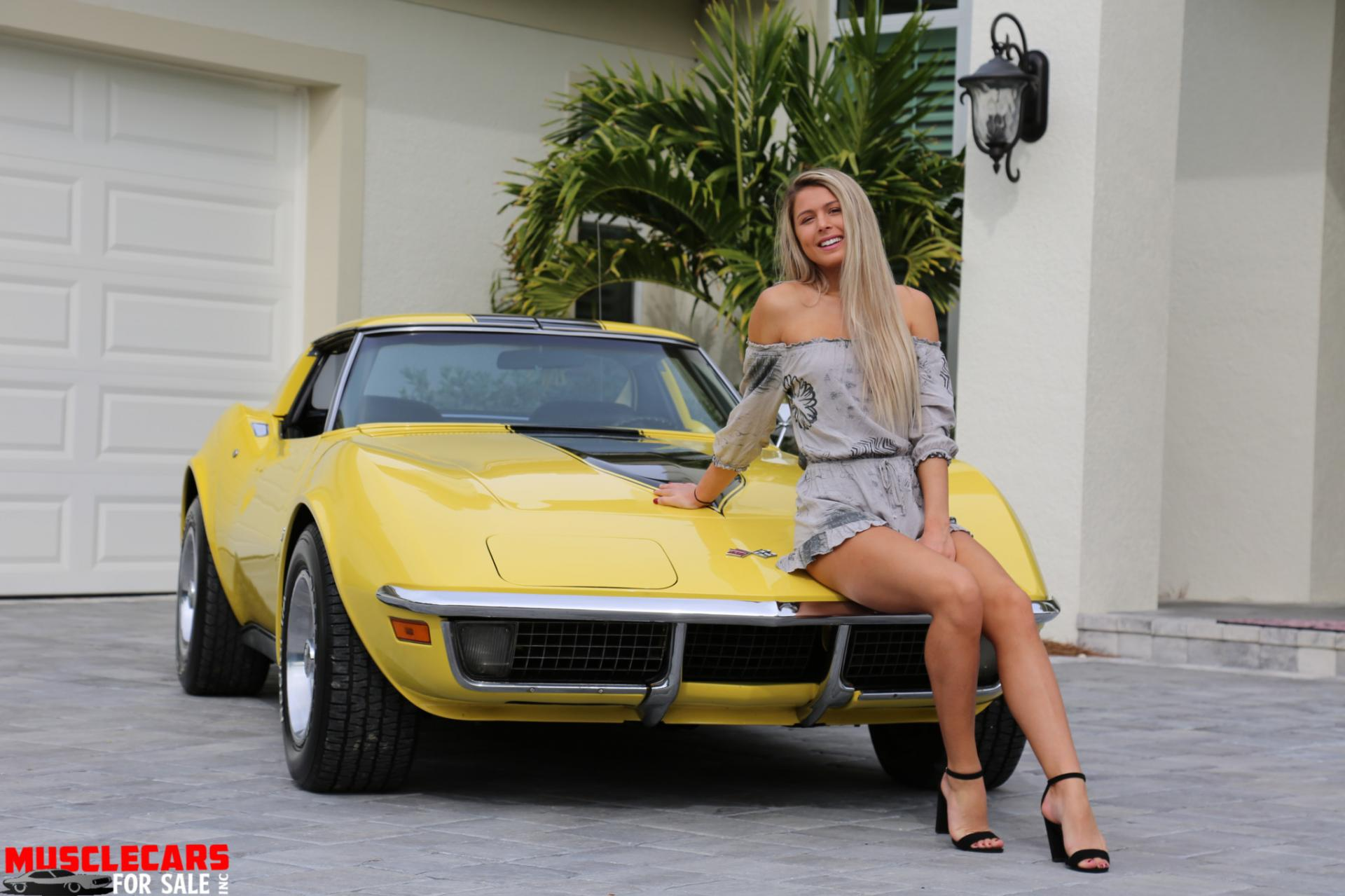 Used 1971 Chevrolet Corvette Stingray for sale Sold at Muscle Cars for Sale Inc. in Fort Myers FL 33912 6