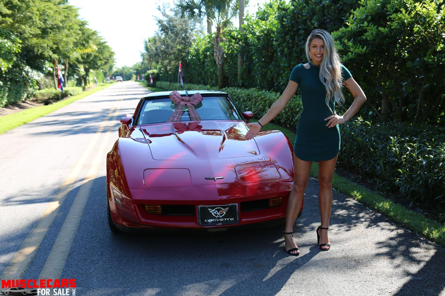 Used 1981 Chevrolet Corvette for sale Sold at Muscle Cars for Sale Inc. in Fort Myers FL 33912 8