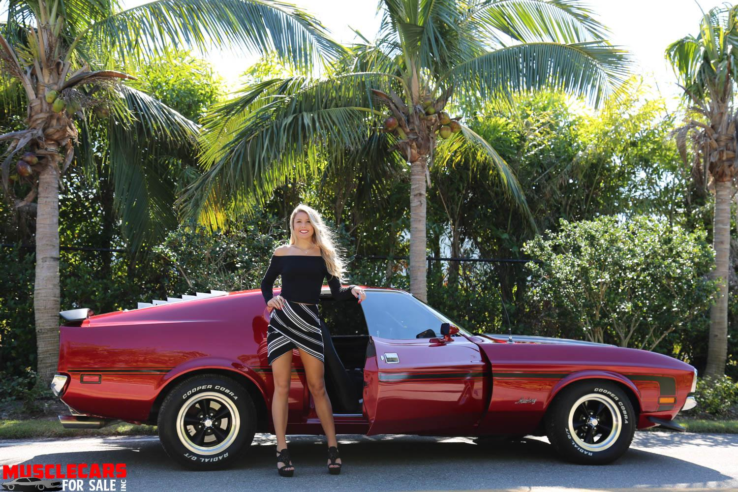 Used 1971 FASTBACK Mustang Mustang for sale Sold at Muscle Cars for Sale Inc. in Fort Myers FL 33912 3