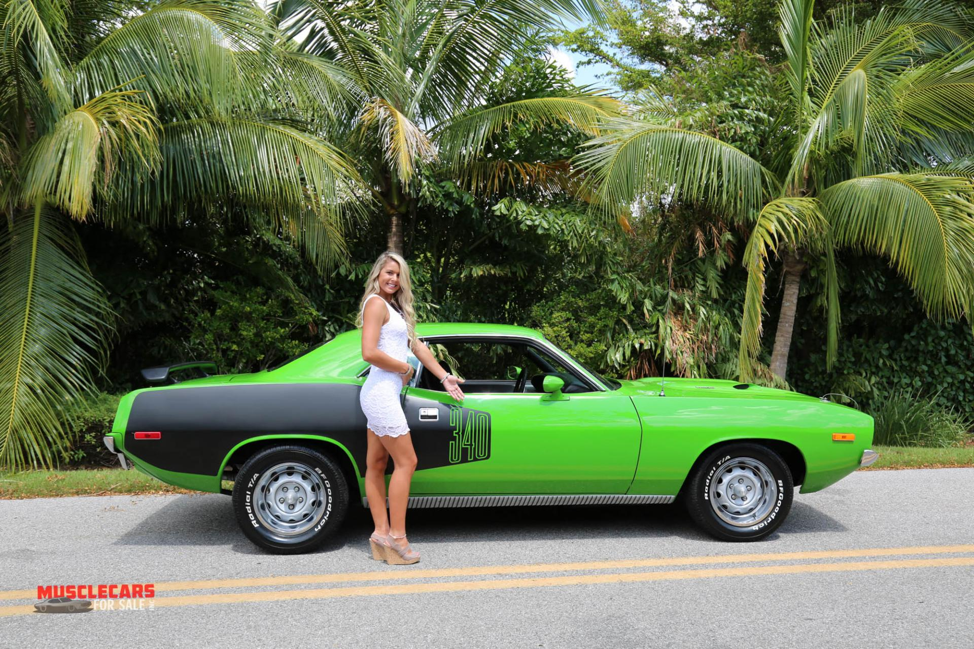 Used 1973 Plymouth  Barracuda for sale Sold at Muscle Cars for Sale Inc. in Fort Myers FL 33912 3