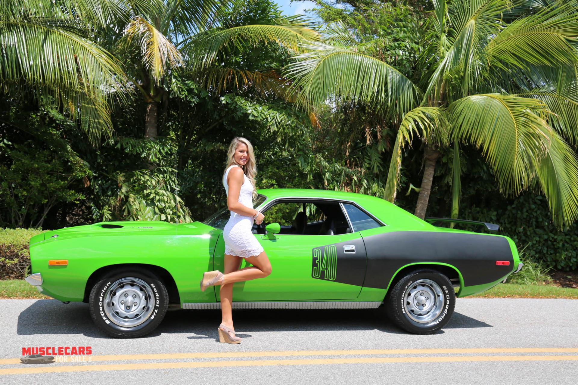 Used 1973 Plymouth  Barracuda for sale Sold at Muscle Cars for Sale Inc. in Fort Myers FL 33912 7