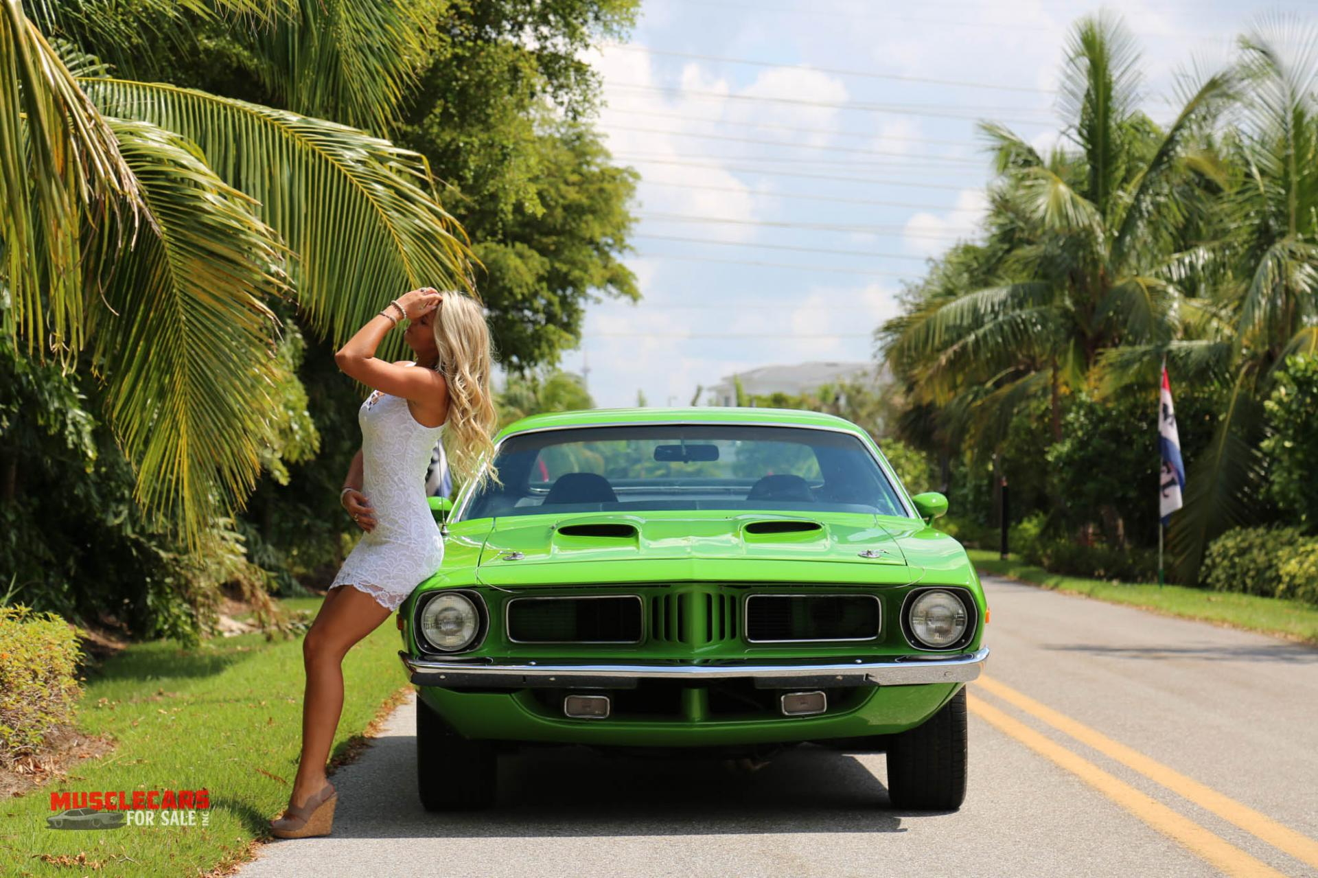 Used 1973 Plymouth  Barracuda for sale Sold at Muscle Cars for Sale Inc. in Fort Myers FL 33912 8