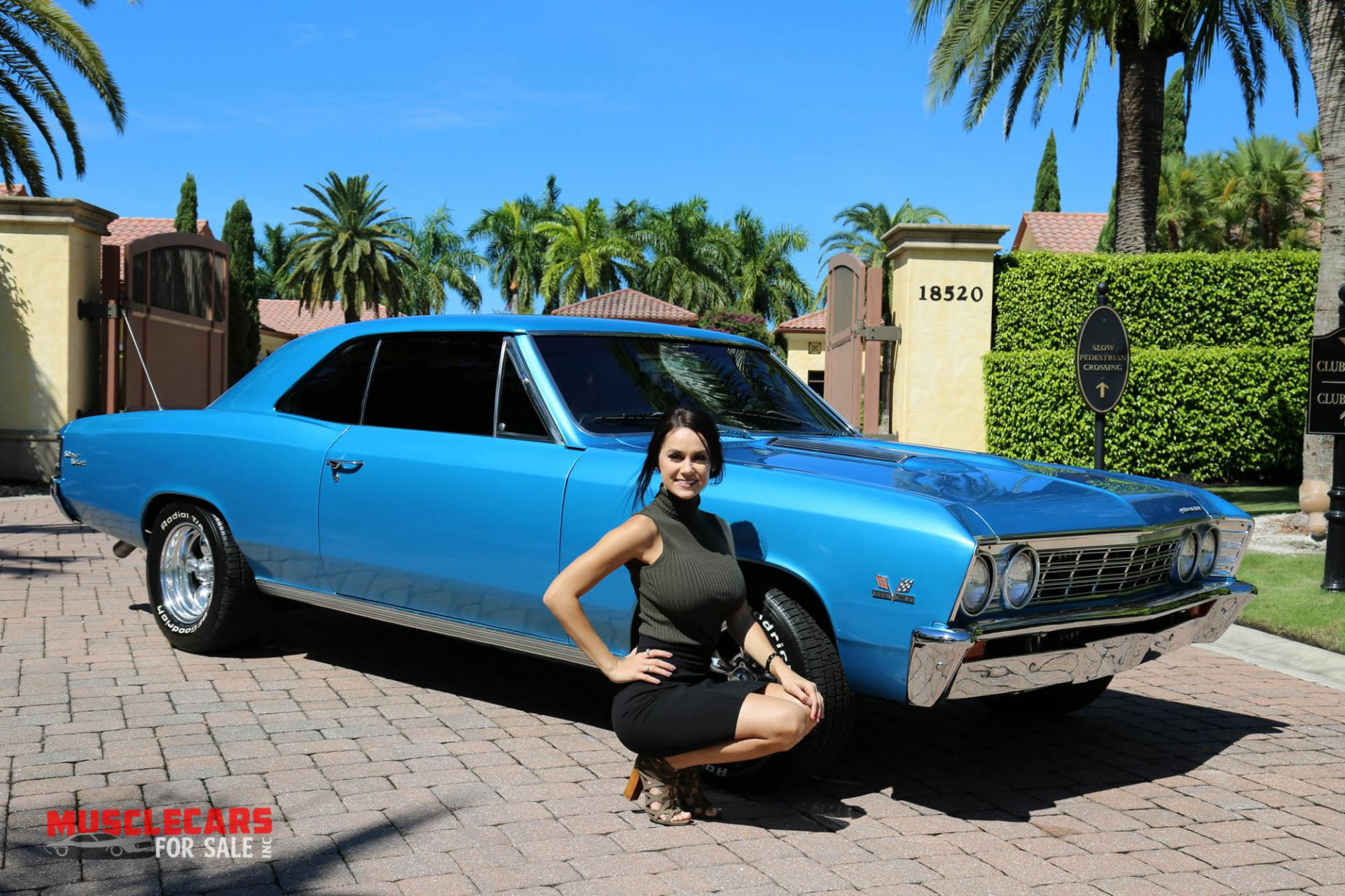 Used 1967 Chevrolet Chevelle SS for sale Sold at Muscle Cars for Sale Inc. in Fort Myers FL 33912 3