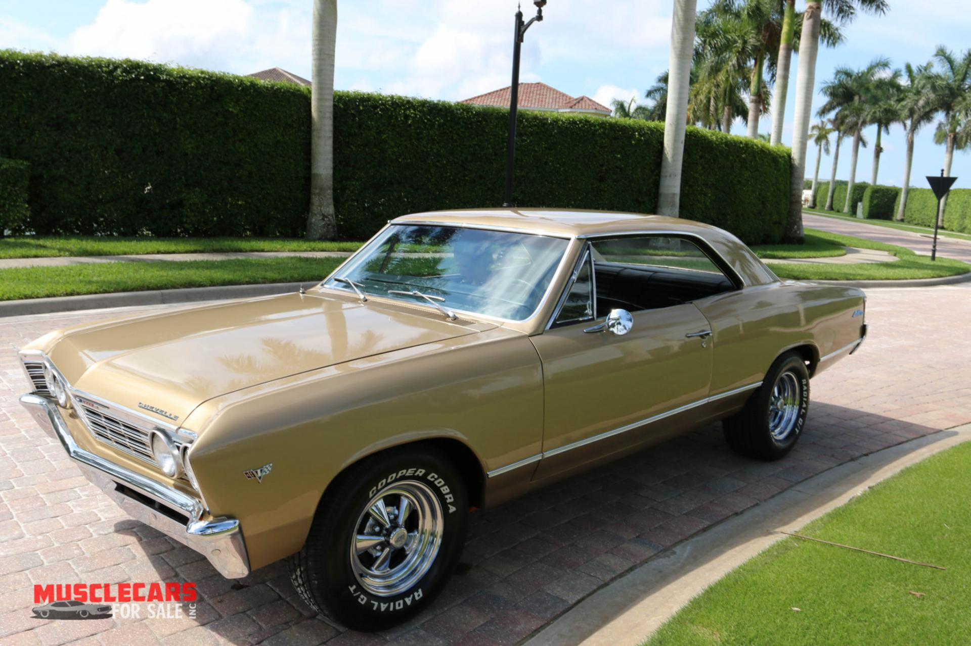 Used 1967 Chevrolet Chevelle for sale Sold at Muscle Cars for Sale Inc. in Fort Myers FL 33912 2