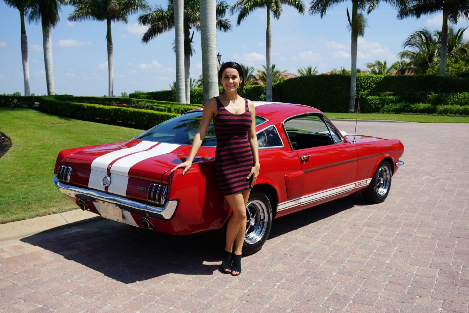 Used 1965 Ford  Shelby Mustang GT350 for sale Sold at Muscle Cars for Sale Inc. in Fort Myers FL 33912 2