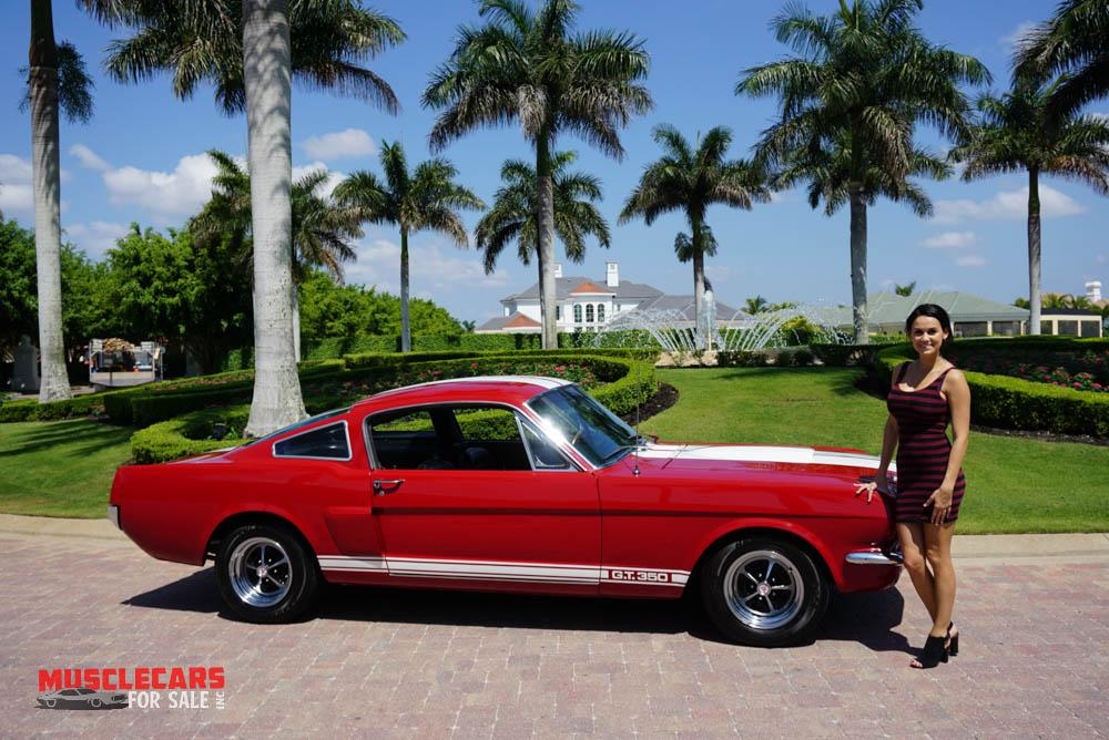 Used 1965 Ford  Shelby Mustang GT350 for sale Sold at Muscle Cars for Sale Inc. in Fort Myers FL 33912 4
