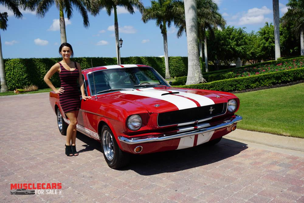 Used 1965 Ford  Shelby Mustang GT350 for sale Sold at Muscle Cars for Sale Inc. in Fort Myers FL 33912 1