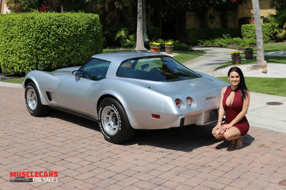 Used 1978 Chevrolet Corvette for sale Sold at Muscle Cars for Sale Inc. in Fort Myers FL 33912 5