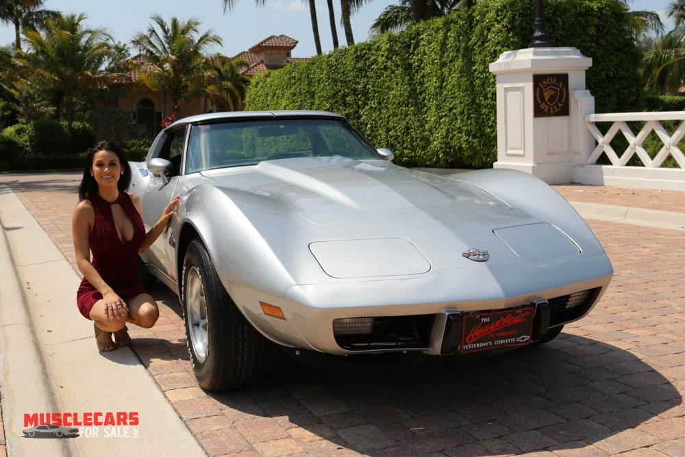 Used 1978 Chevrolet Corvette for sale Sold at Muscle Cars for Sale Inc. in Fort Myers FL 33912 6