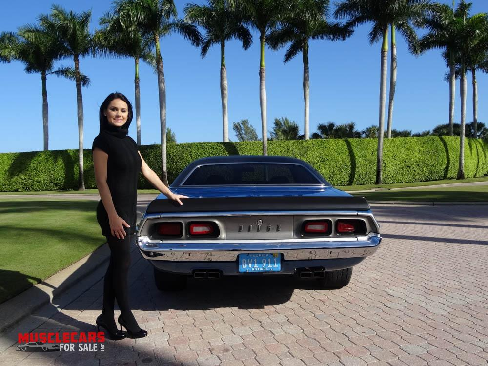 Used 1973 Dodge  Challenger for sale Sold at Muscle Cars for Sale Inc. in Fort Myers FL 33912 6