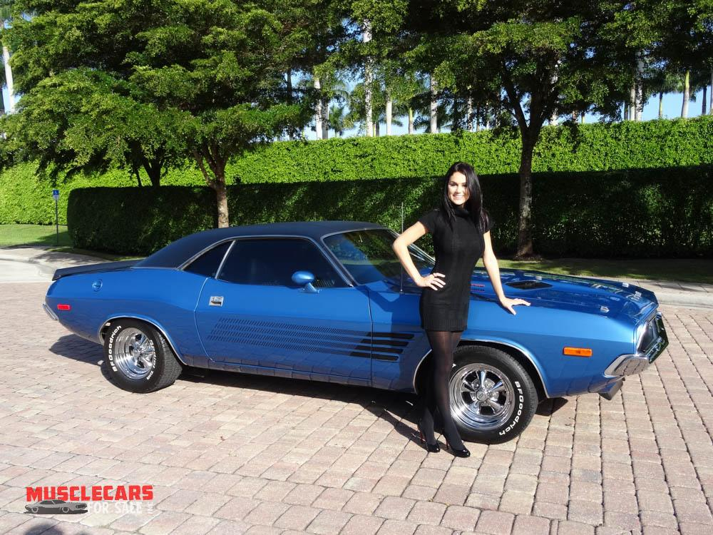 Used 1973 Dodge  Challenger for sale Sold at Muscle Cars for Sale Inc. in Fort Myers FL 33912 1