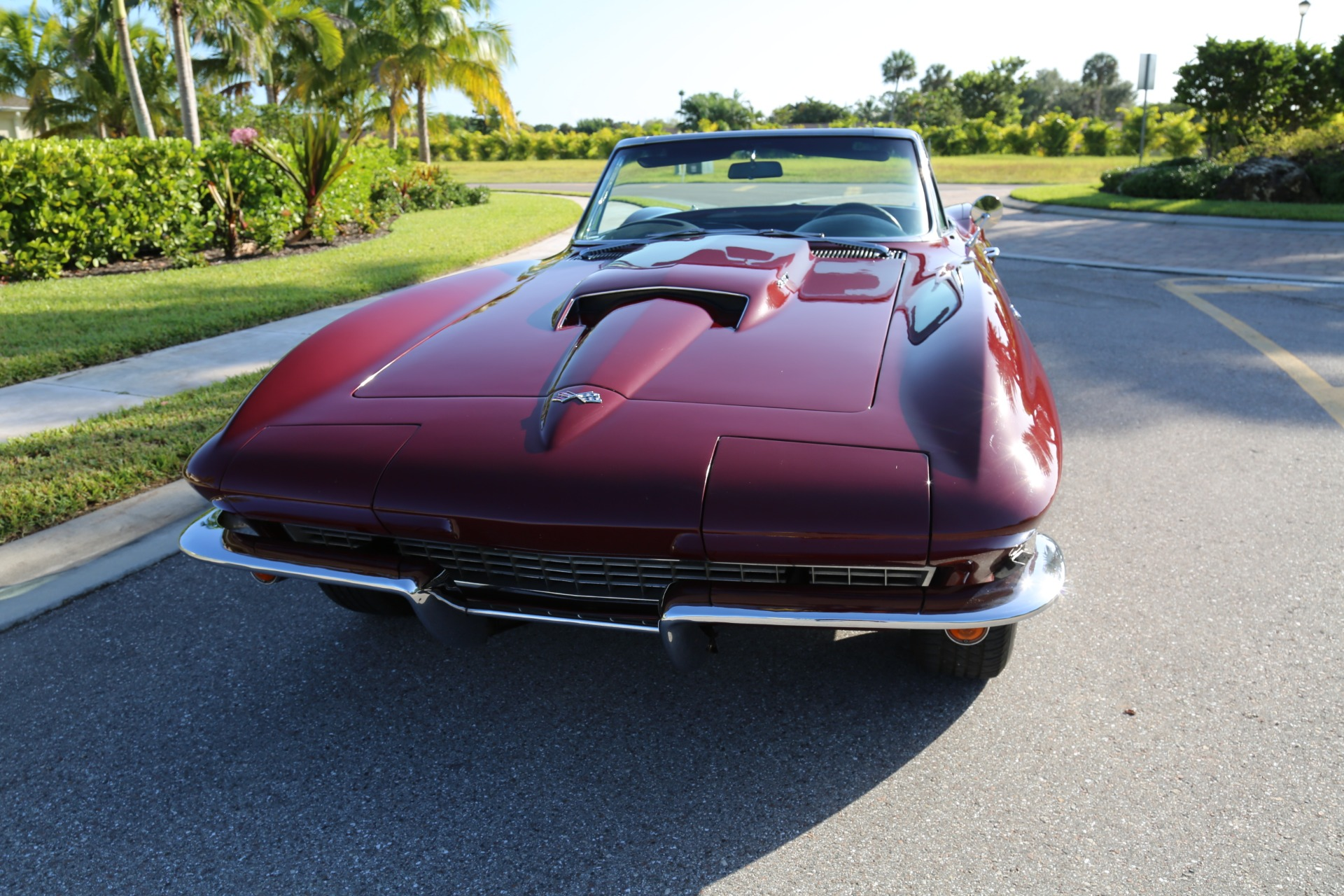 Used 1964 Chevrolet Corvette Stingray for sale $42,000 at Muscle Cars for Sale Inc. in Fort Myers FL 33912 8
