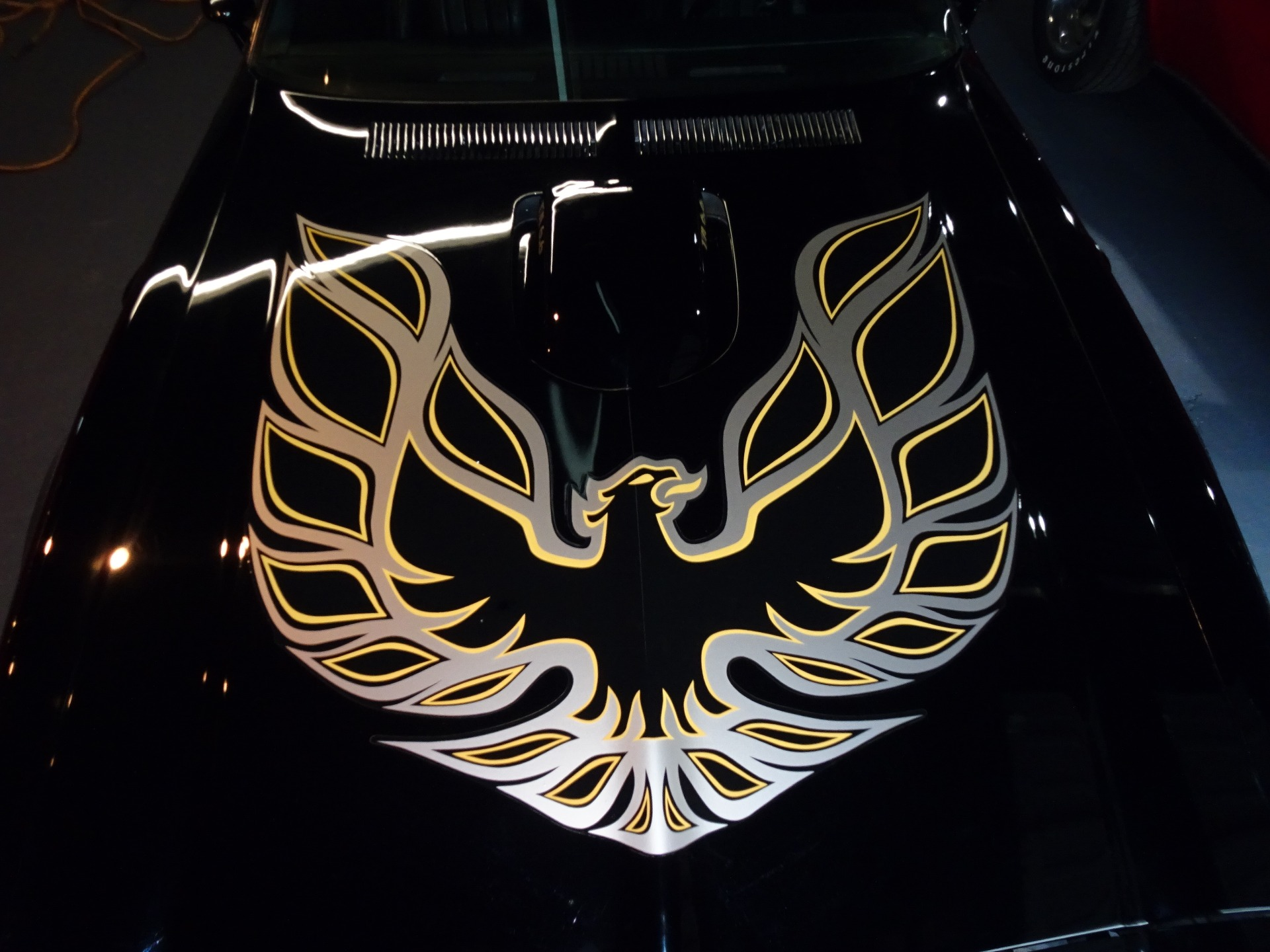 Used 1976 Pontiac Trans Am Trans Am for sale Sold at Muscle Cars for Sale Inc. in Fort Myers FL 33912 4