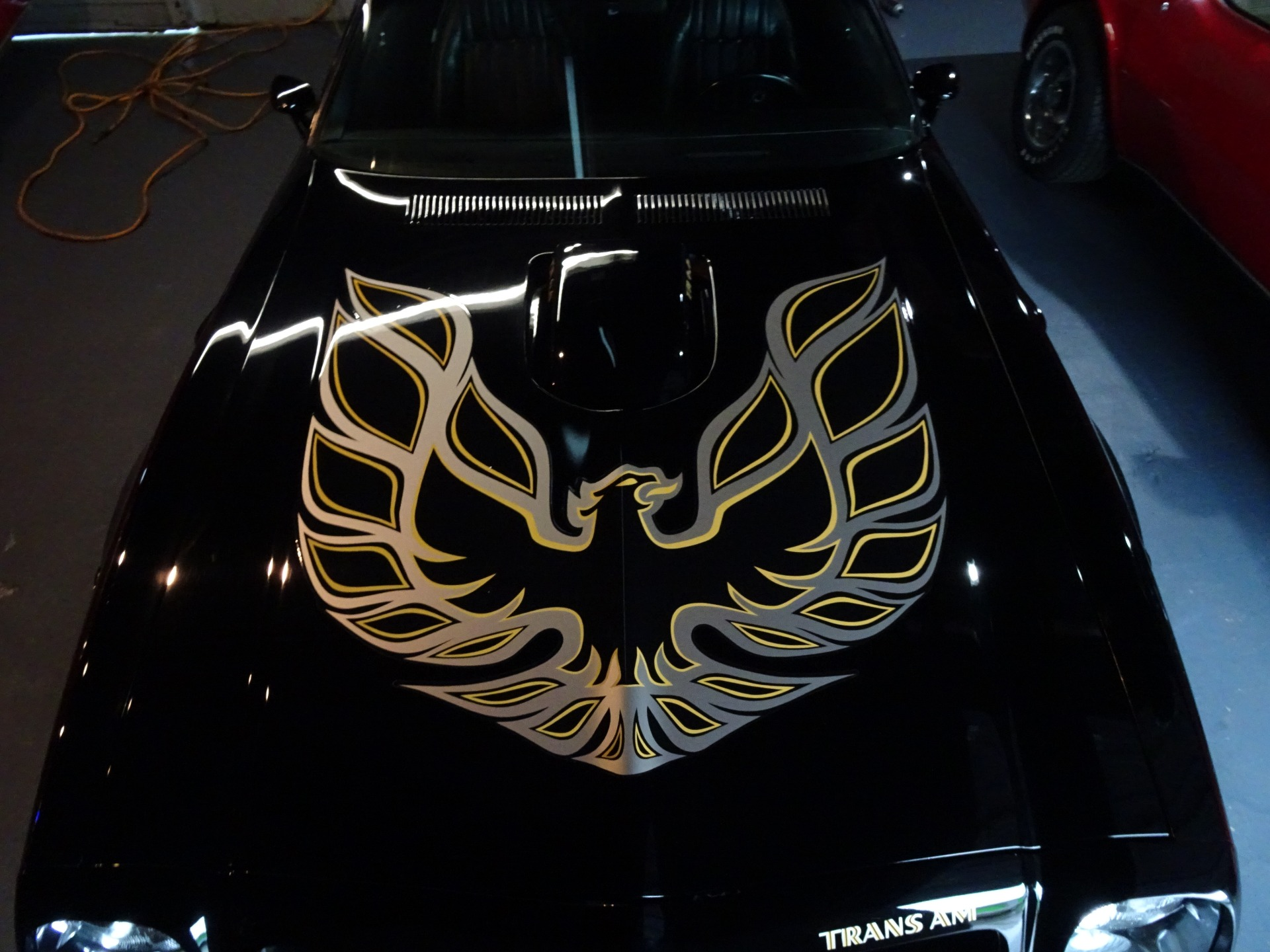 Used 1976 Pontiac Trans Am Trans Am for sale Sold at Muscle Cars for Sale Inc. in Fort Myers FL 33912 7