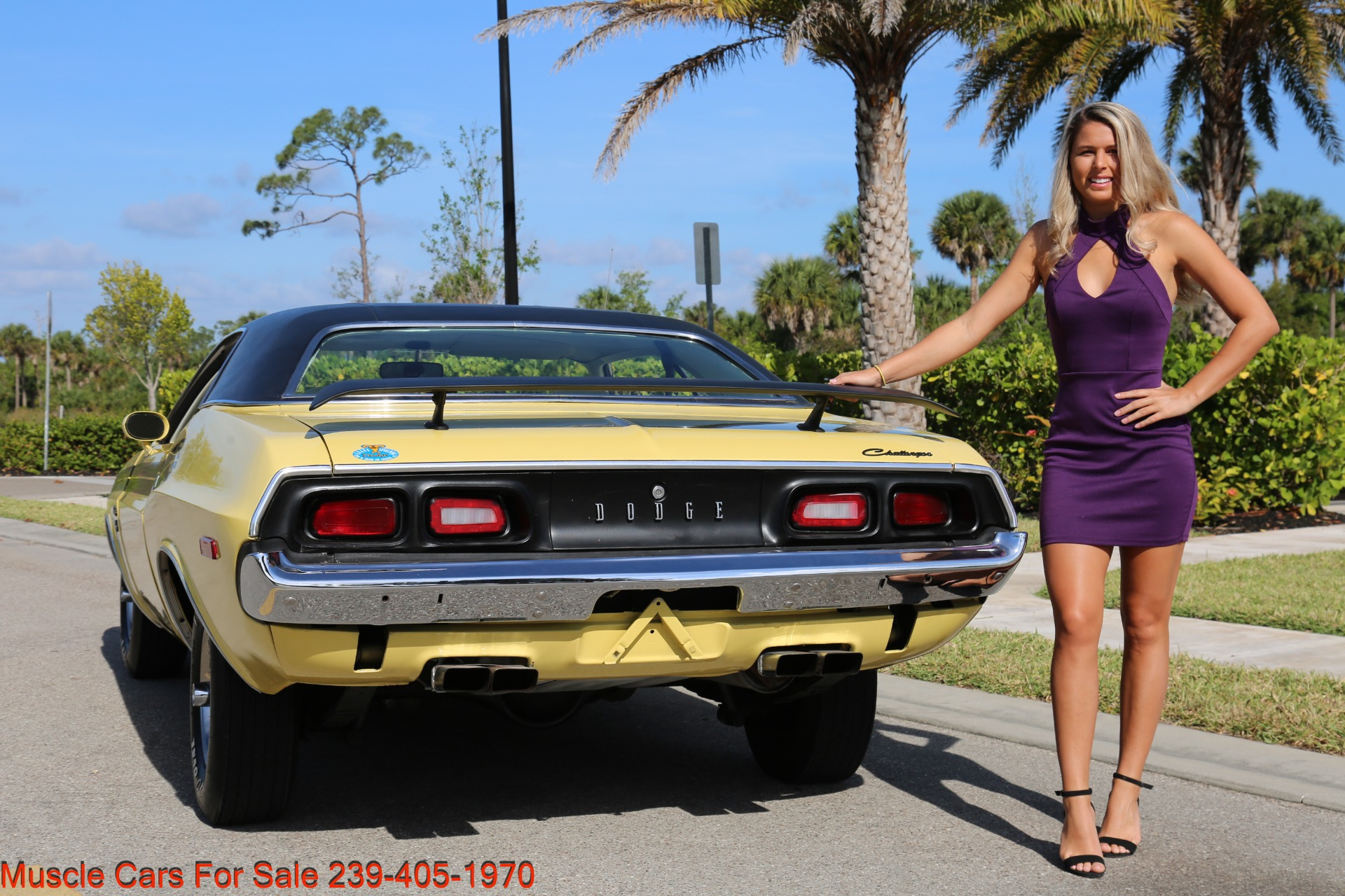 Used 1974 Dodge Challenger R/T for sale $28,900 at Muscle Cars for Sale Inc. in Fort Myers FL 33912 3