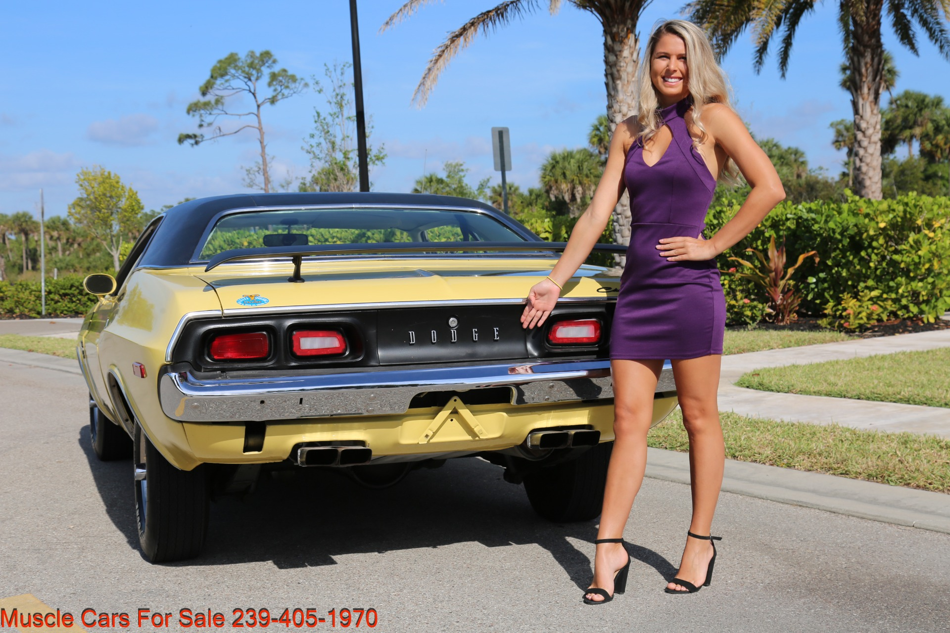 Used 1974 Dodge Challenger R/T for sale $29,900 at Muscle Cars for Sale Inc. in Fort Myers FL 33912 4