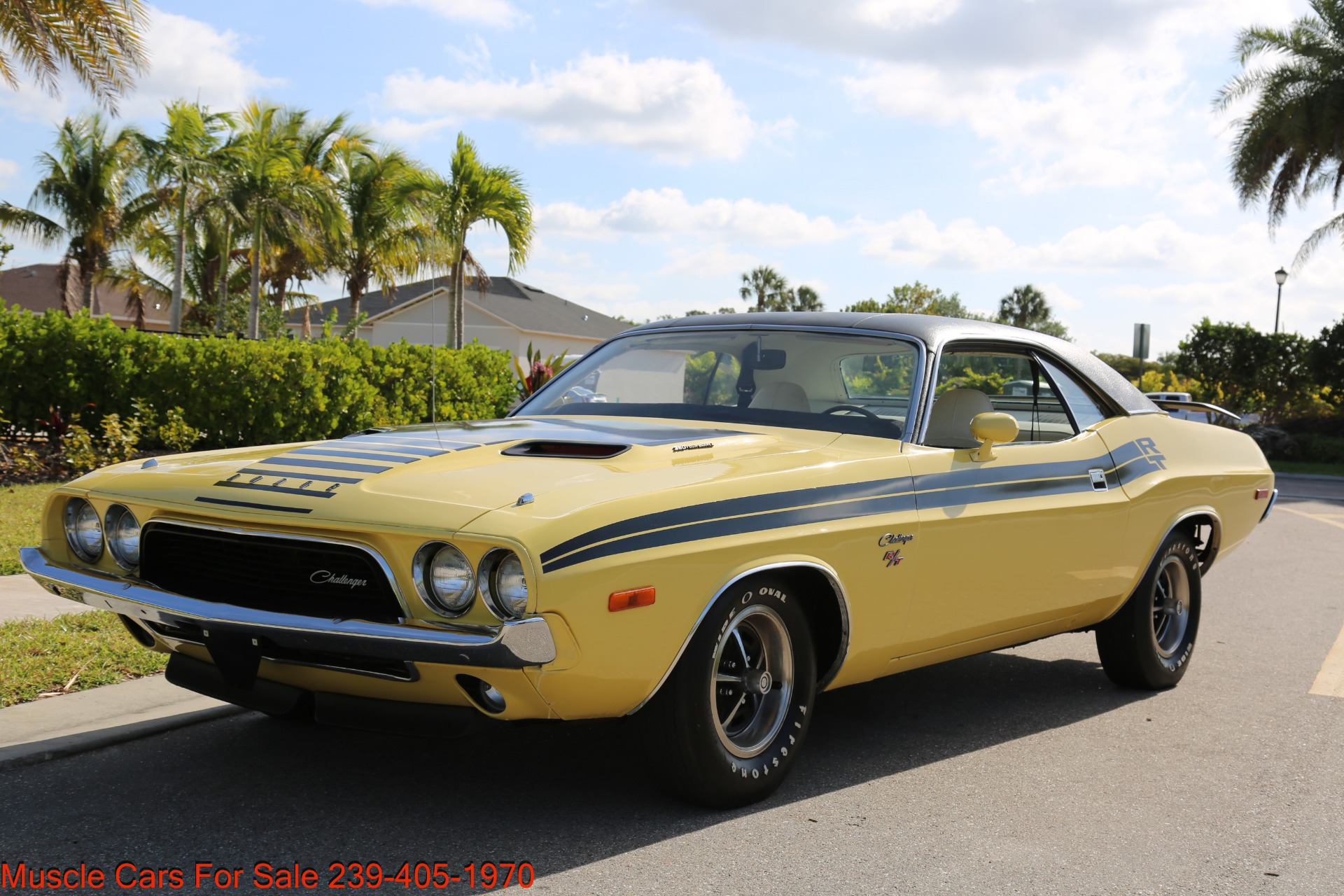 Used 1974 Dodge Challenger R/T for sale $28,900 at Muscle Cars for Sale Inc. in Fort Myers FL 33912 7