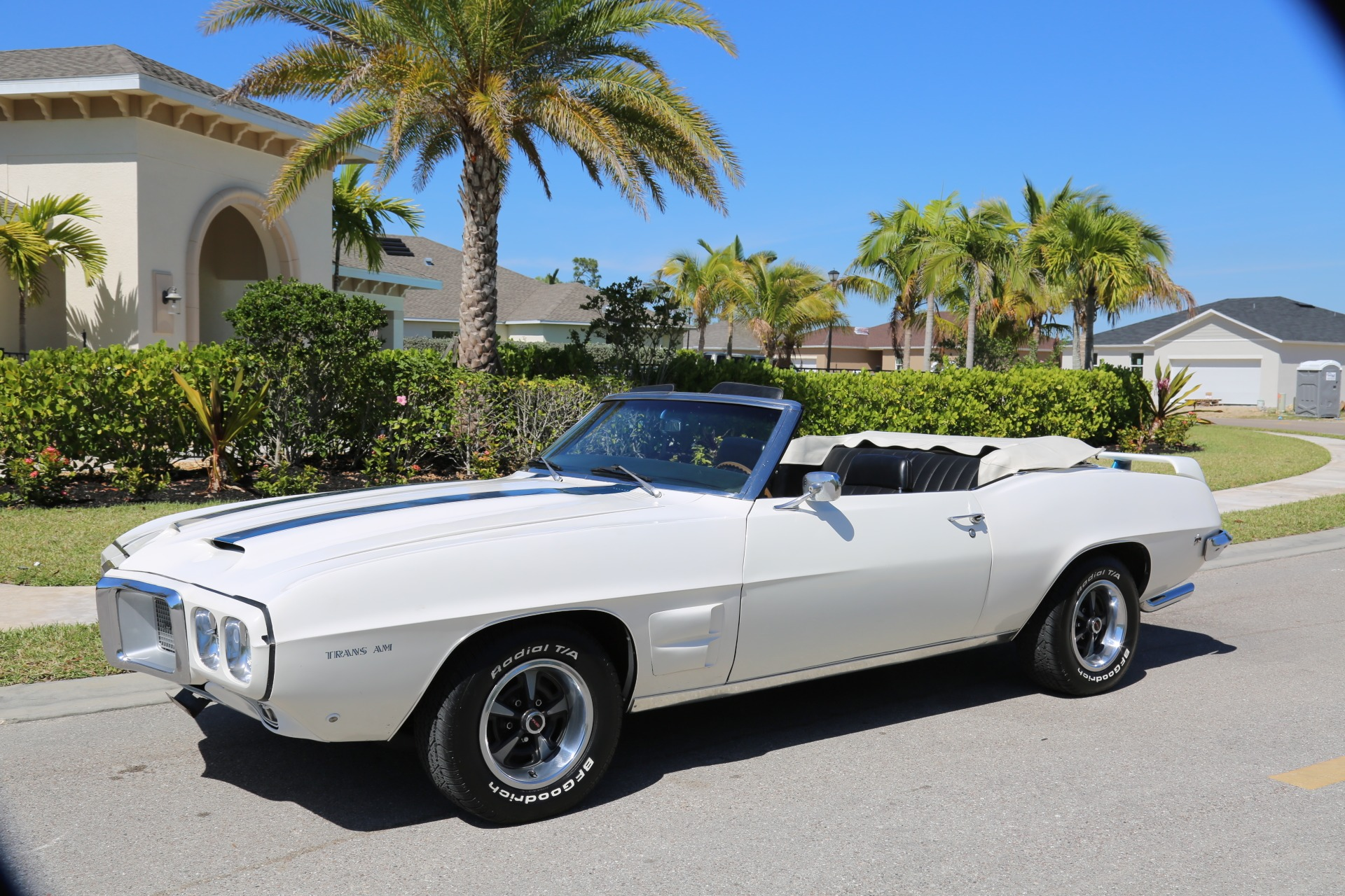 Used 1969 Pontiac Firebird for sale Sold at Muscle Cars for Sale Inc. in Fort Myers FL 33912 8