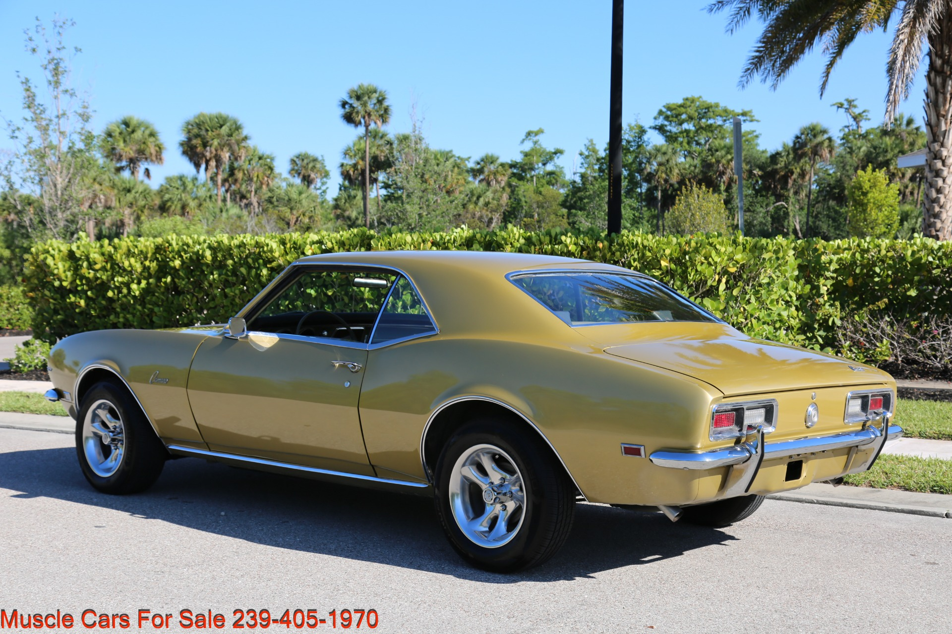 Used 1968 Chevy Camaro for sale Sold at Muscle Cars for Sale Inc. in Fort Myers FL 33912 5