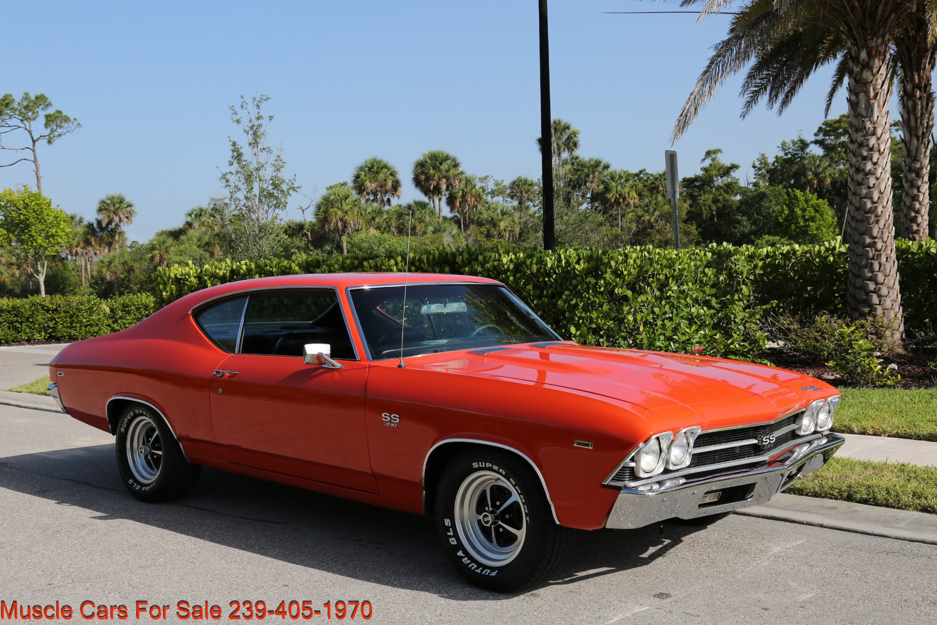 Used 1969 Chevy Chevelle SS SS for sale Sold at Muscle Cars for Sale Inc. in Fort Myers FL 33912 3