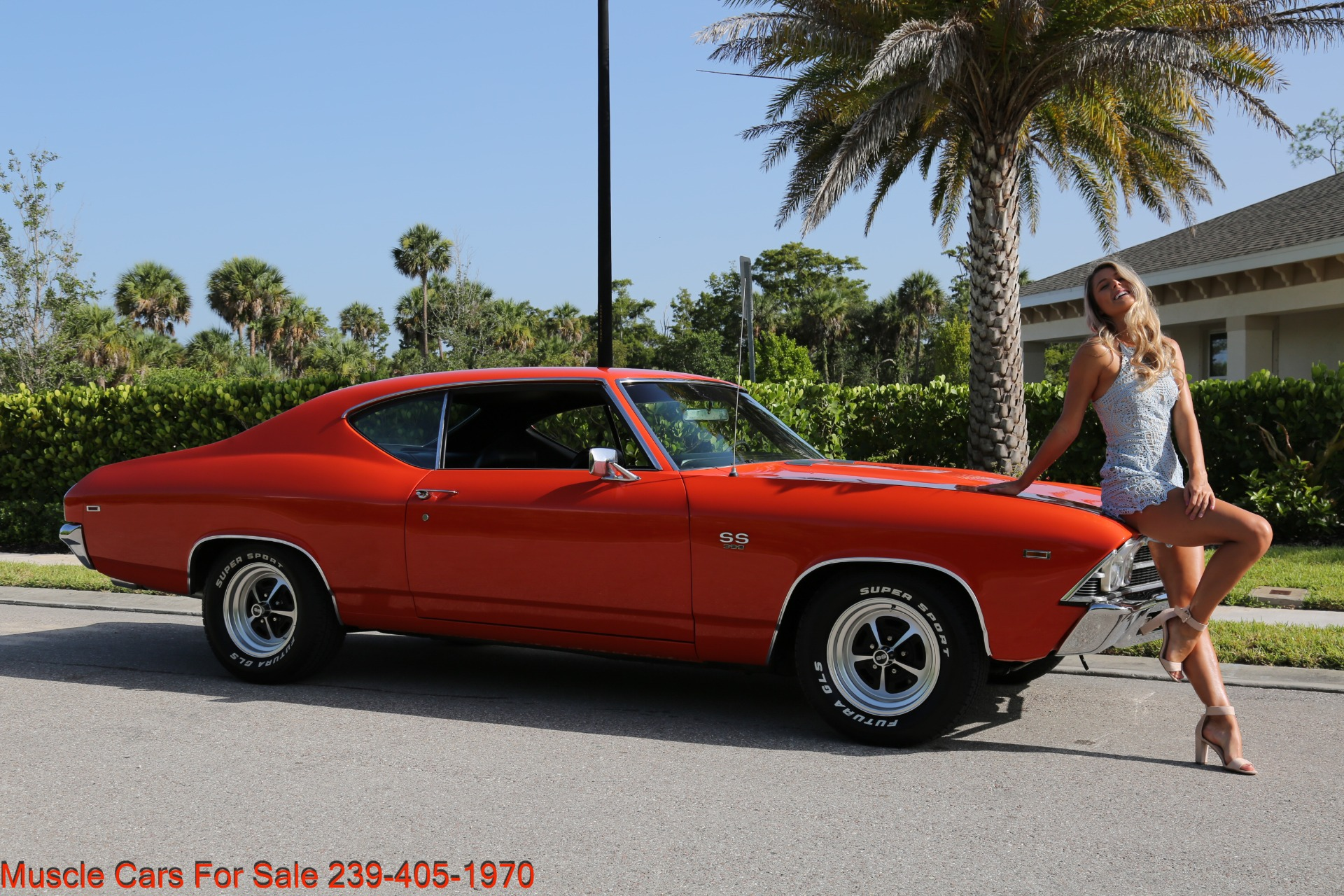 Used 1969 Chevy Chevelle SS SS for sale Sold at Muscle Cars for Sale Inc. in Fort Myers FL 33912 1
