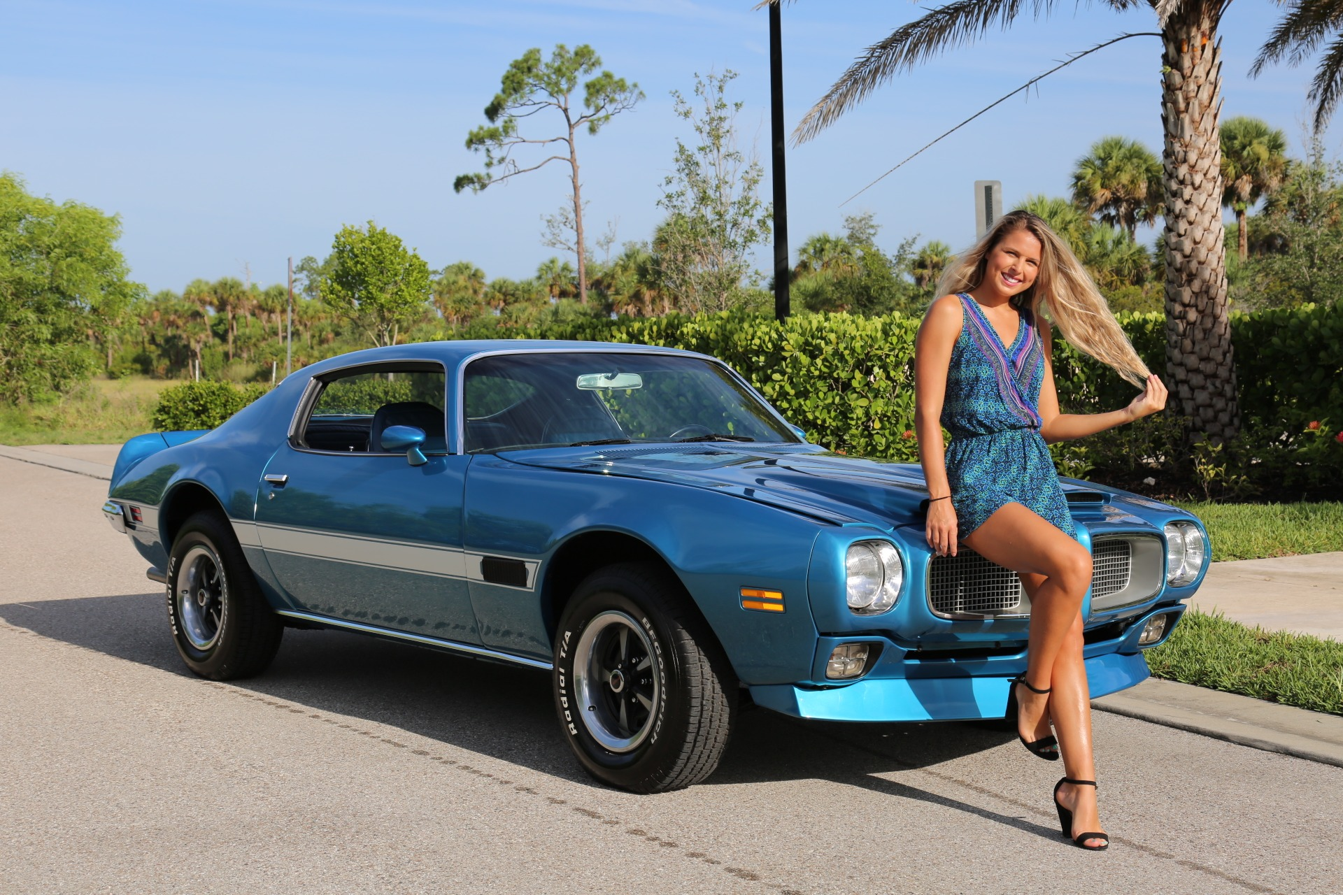 Used 1971 Pontiac Firebird for sale Sold at Muscle Cars for Sale Inc. in Fort Myers FL 33912 3