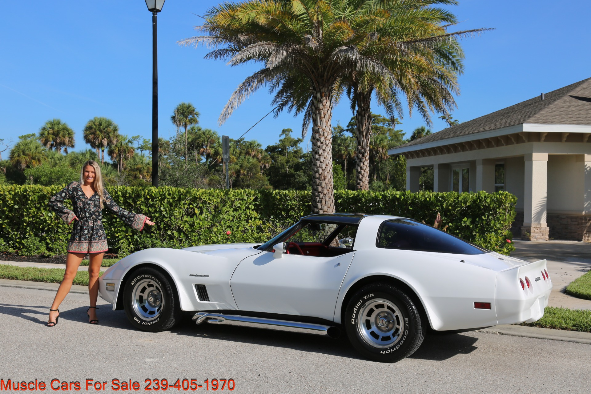 Used 1982 Chevrolet Corvette T TOP Crate motor 330 HP for sale $13,000 at Muscle Cars for Sale Inc. in Fort Myers FL 33912 2