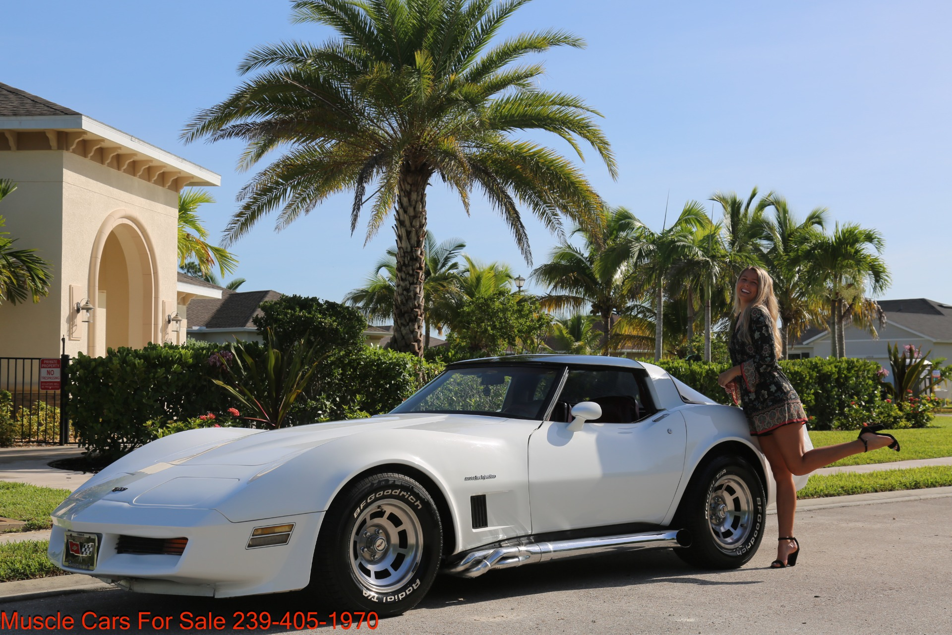 Used 1982 Chevrolet Corvette T TOP Crate motor 330 HP for sale $13,000 at Muscle Cars for Sale Inc. in Fort Myers FL 33912 4