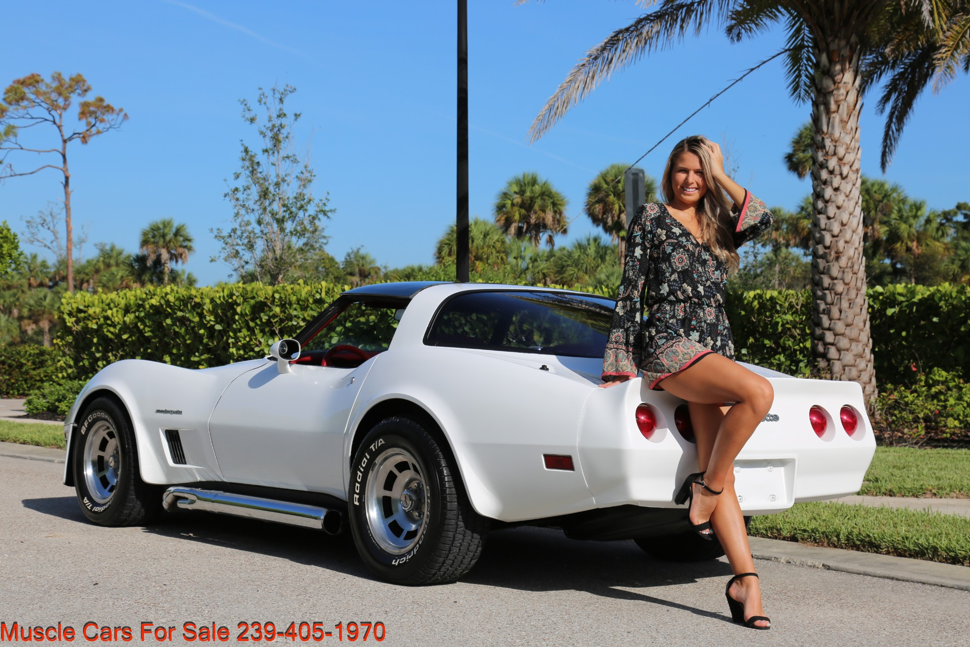 Used 1982 Chevrolet Corvette T TOP Crate motor 330 HP for sale $13,000 at Muscle Cars for Sale Inc. in Fort Myers FL 33912 6