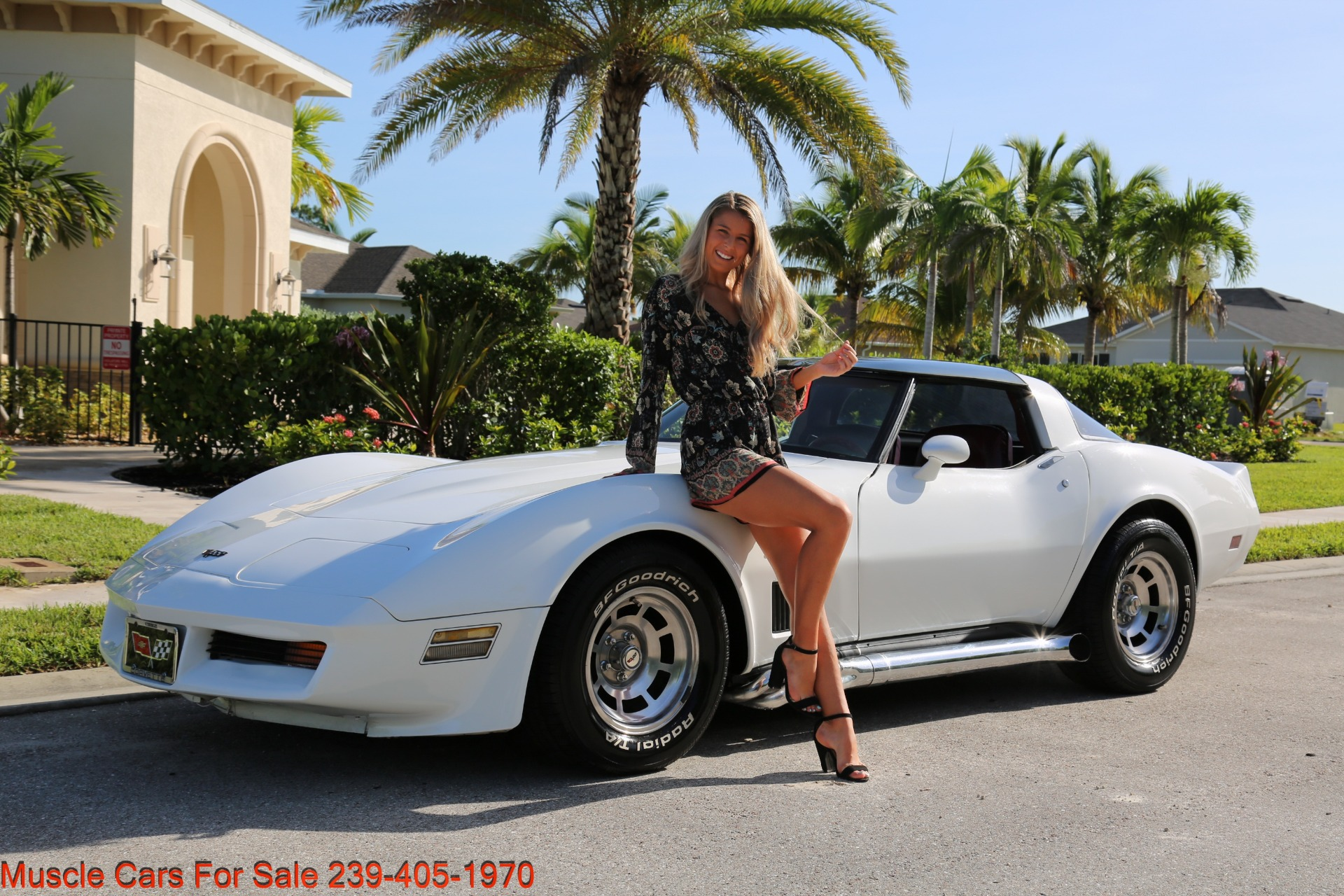 Used 1982 Chevrolet Corvette T TOP Crate motor 330 HP for sale $13,000 at Muscle Cars for Sale Inc. in Fort Myers FL 33912 1