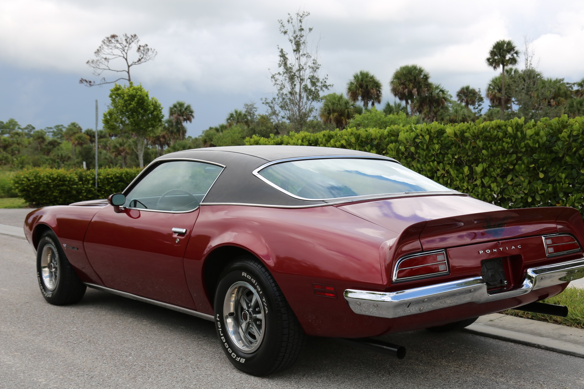 Used 1973 Pontiac Firebird Firebird for sale Sold at Muscle Cars for Sale Inc. in Fort Myers FL 33912 3