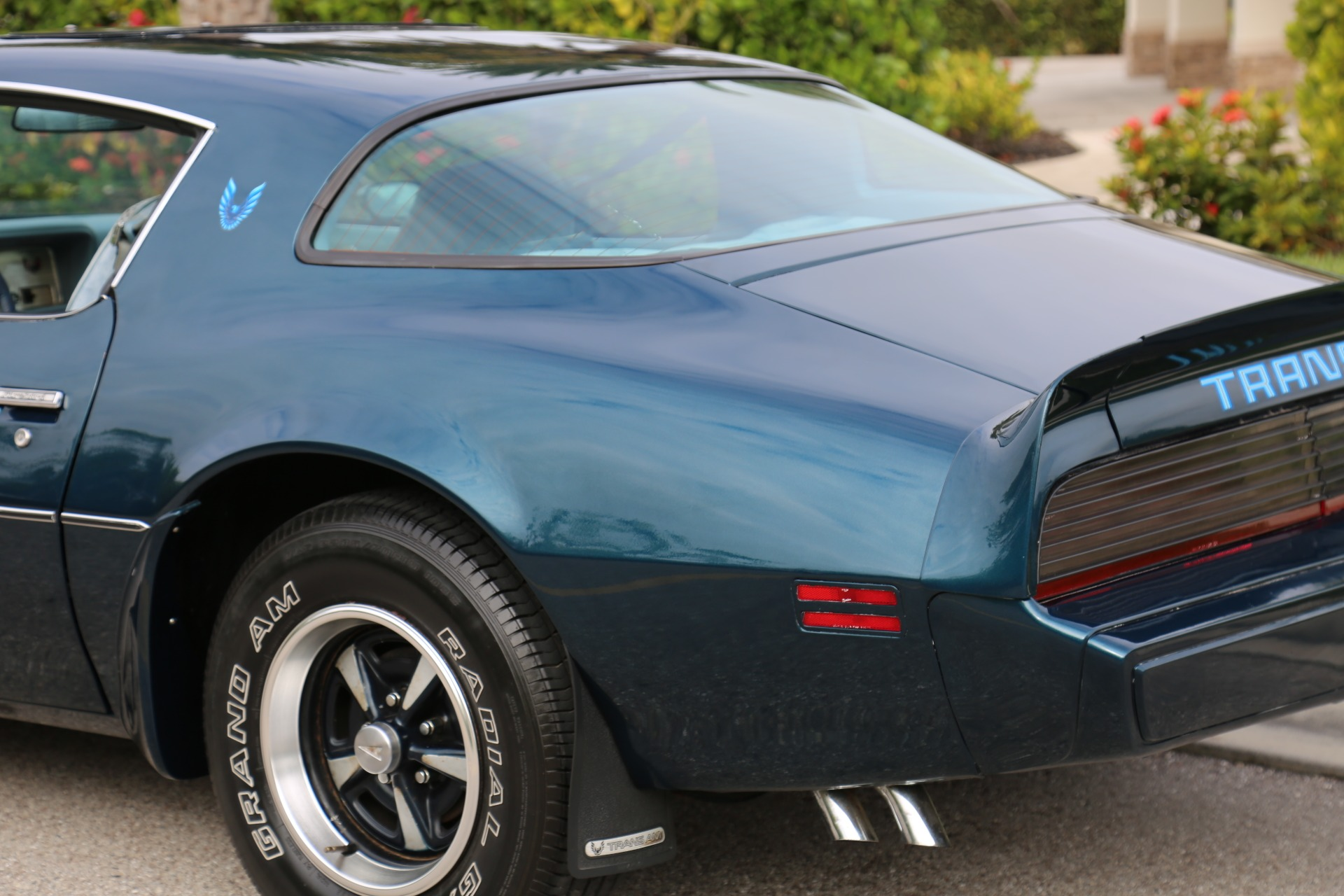 Used 1979 Pontiac Trans Am Trans am for sale $14,500 at Muscle Cars for Sale Inc. in Fort Myers FL 33912 8