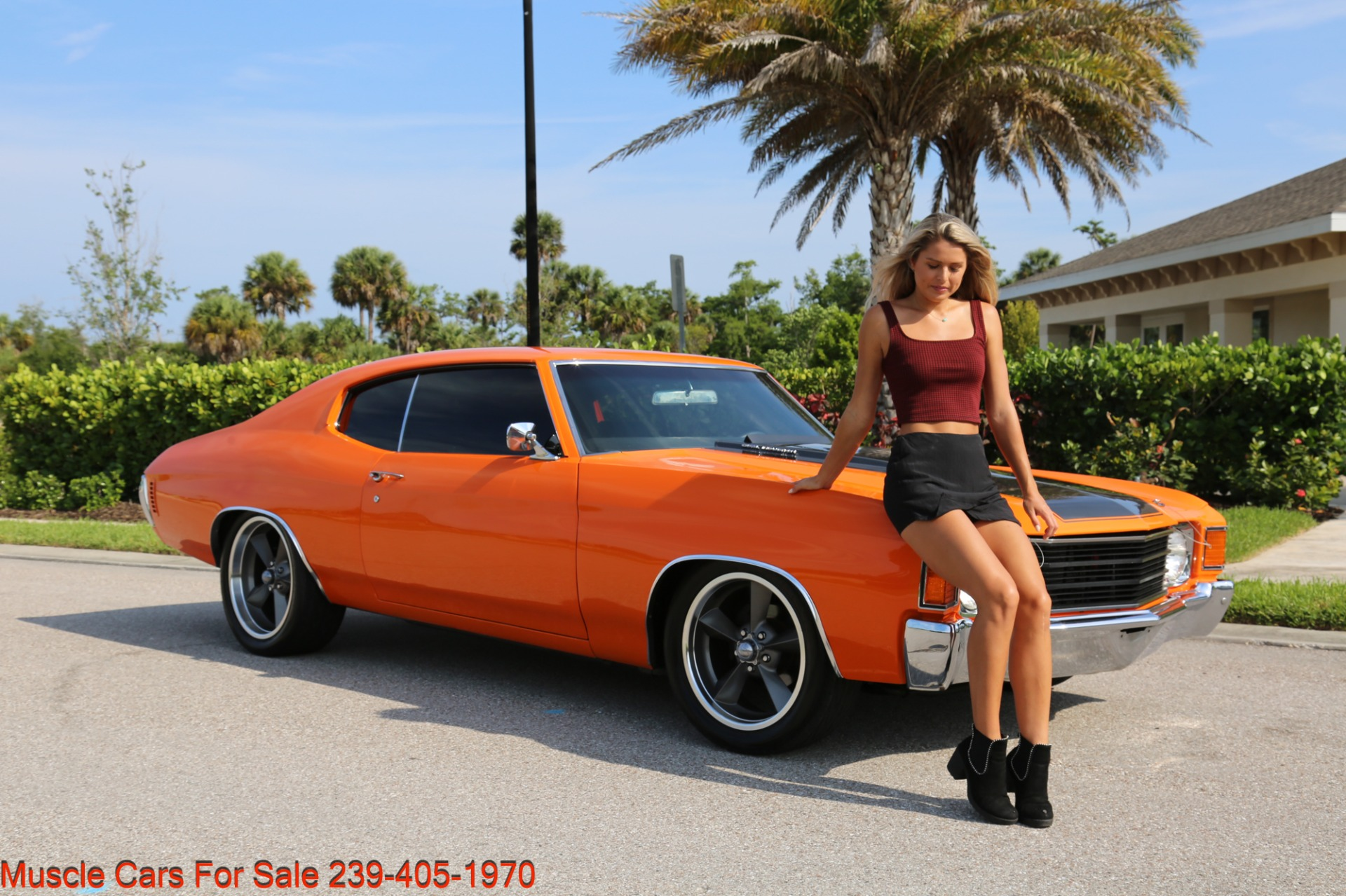 Used 1972 Chevy Chevelle LS 6 speed Cp for sale Sold at Muscle Cars for Sale Inc. in Fort Myers FL 33912 5