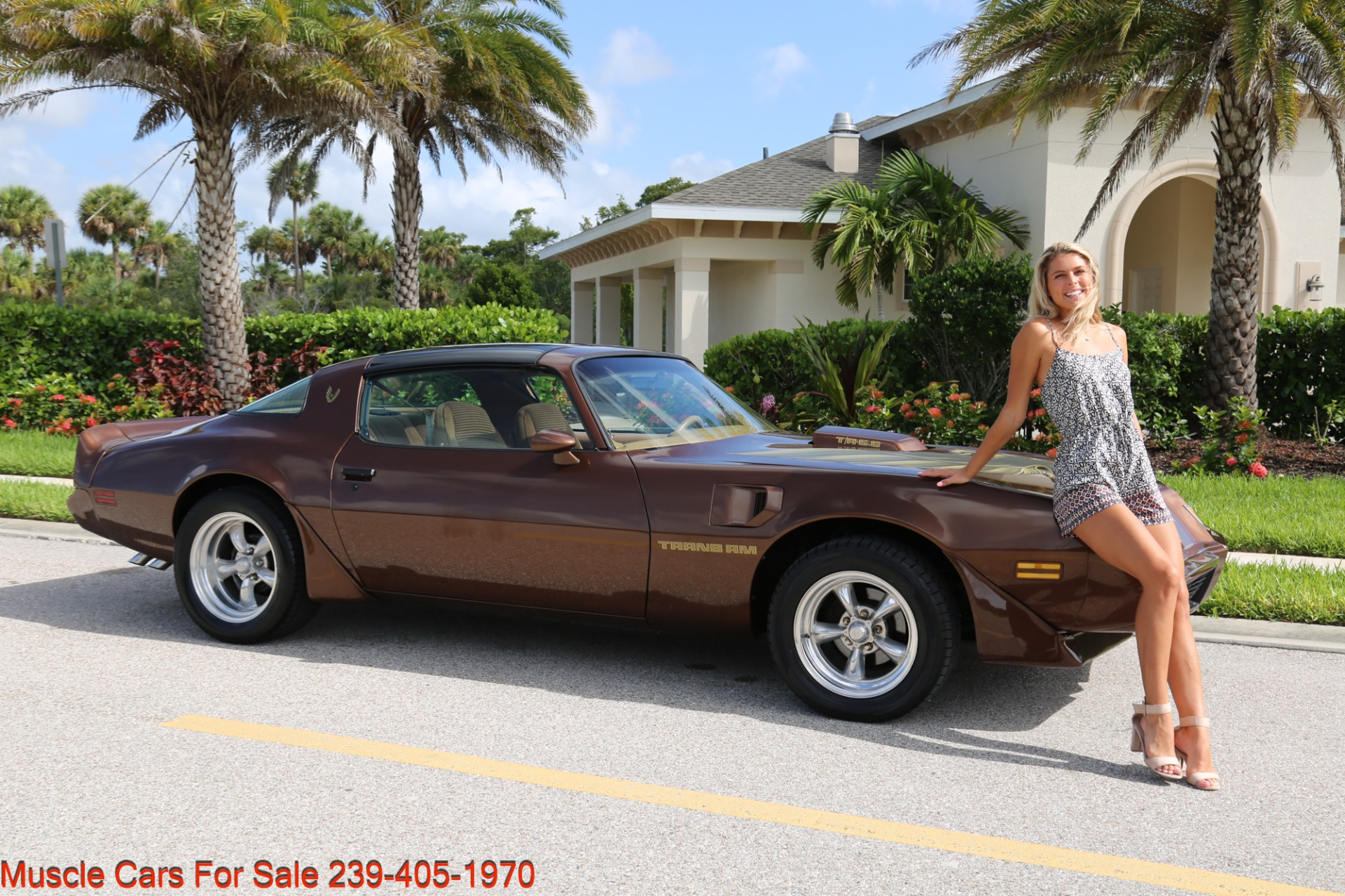 Used 1979 Pontiac Trans Am Trans Am 6.6 for sale $23,600 at Muscle Cars for Sale Inc. in Fort Myers FL 33912 2