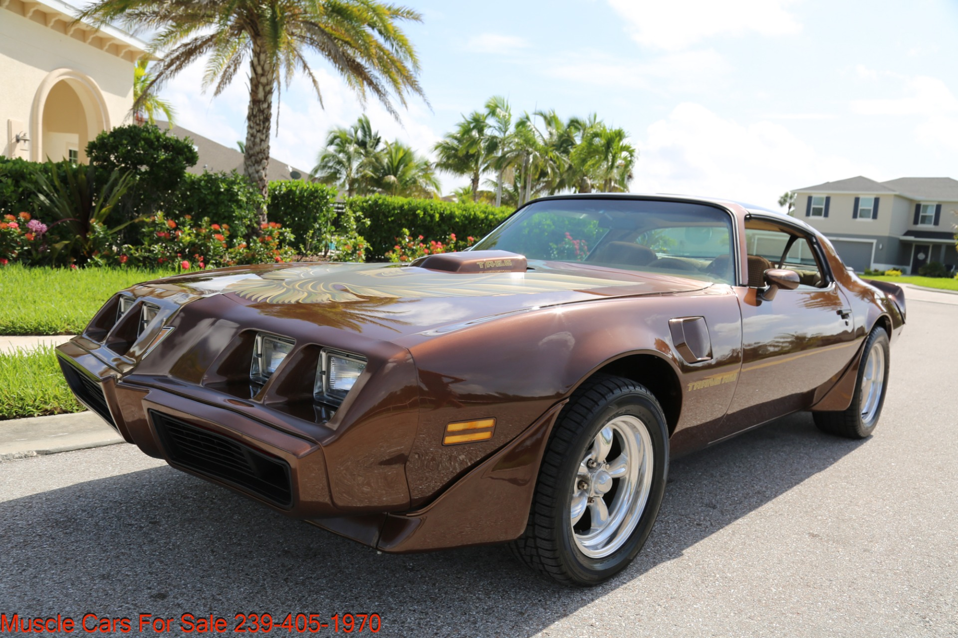 Used 1979 Pontiac Trans Am Trans Am 6.6 for sale $23,600 at Muscle Cars for Sale Inc. in Fort Myers FL 33912 5