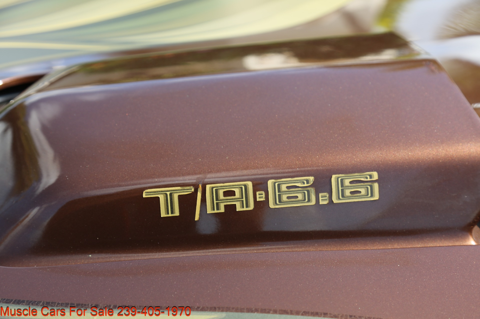 Used 1979 Pontiac Trans Am Trans Am 6.6 for sale $23,600 at Muscle Cars for Sale Inc. in Fort Myers FL 33912 7