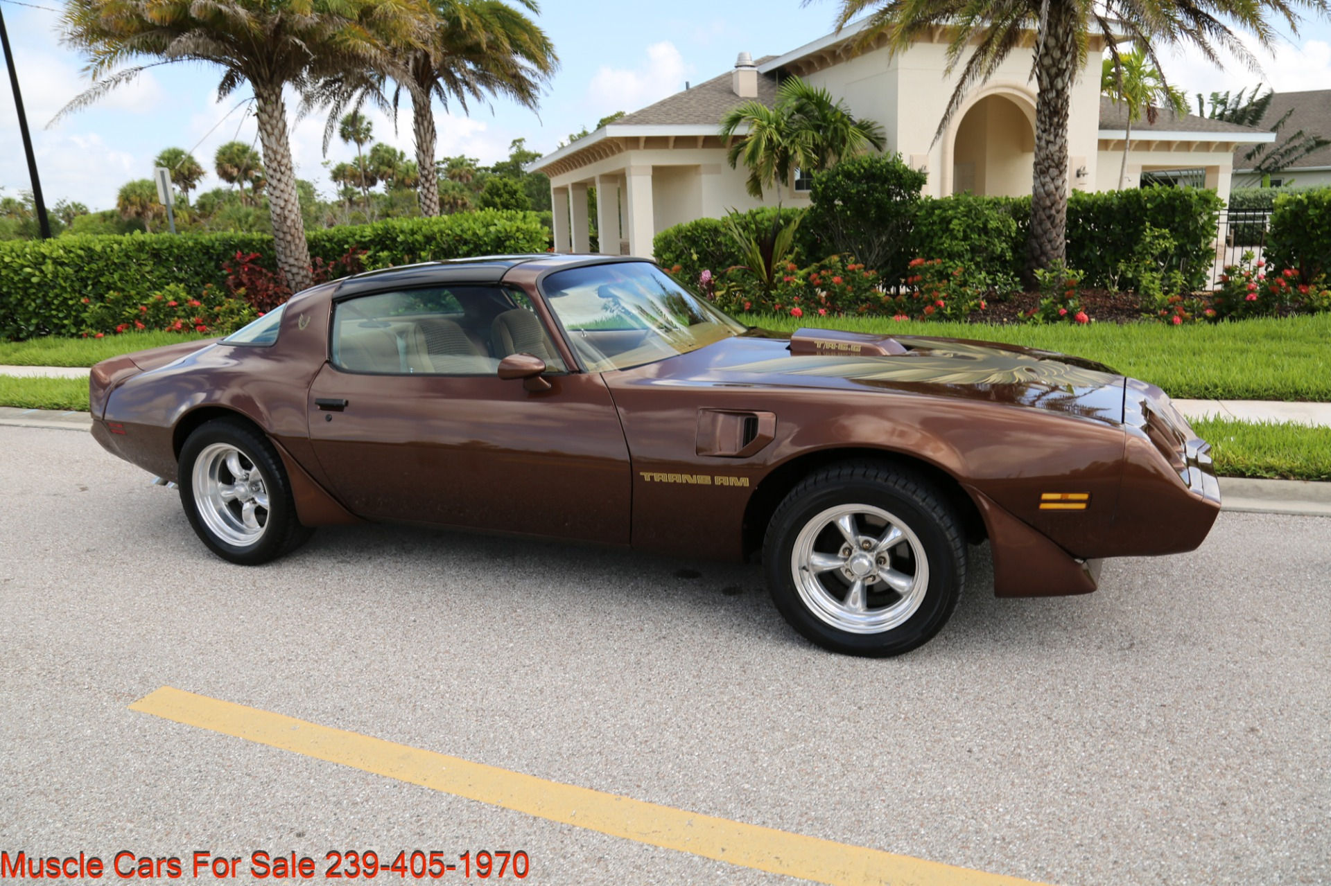 Used 1979 Pontiac Trans Am Trans Am 6.6 for sale $23,600 at Muscle Cars for Sale Inc. in Fort Myers FL 33912 8