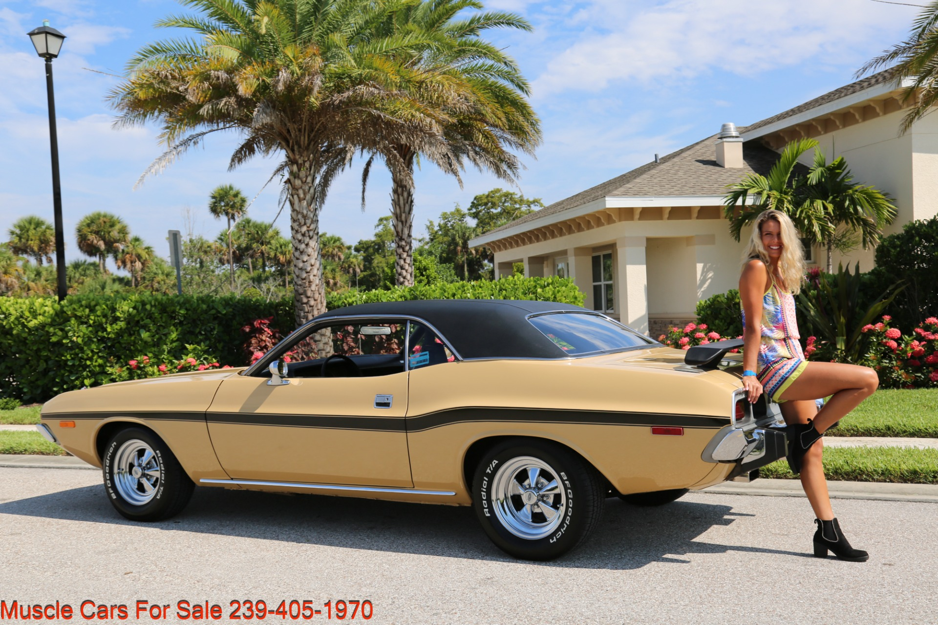 Used 1974 Dodge Challenger V8  Auto for sale $34,000 at Muscle Cars for Sale Inc. in Fort Myers FL 33912 2