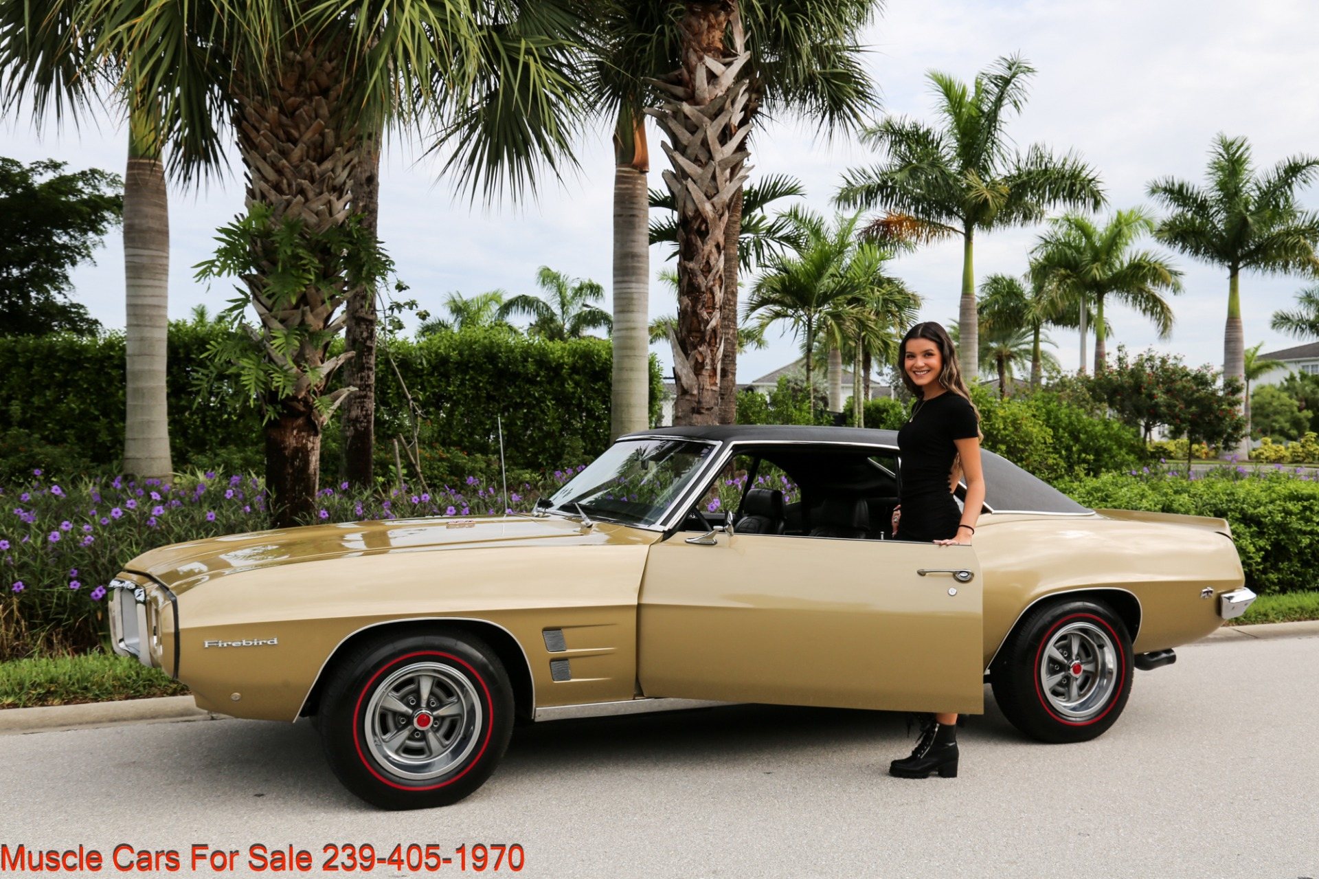 Used 1969 Pontiac Firebird V8 Auto for sale $27,900 at Muscle Cars for Sale Inc. in Fort Myers FL 33912 3