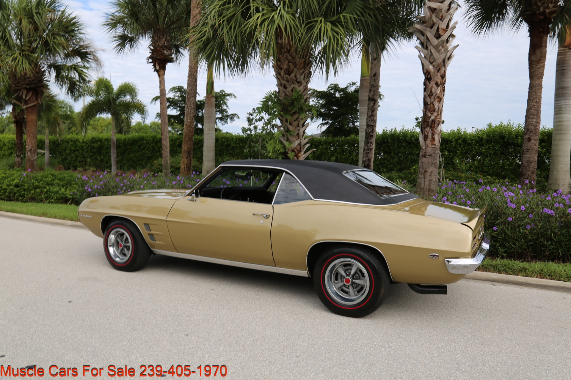 Used 1969 Pontiac Firebird V8 Auto for sale $27,900 at Muscle Cars for Sale Inc. in Fort Myers FL 33912 4