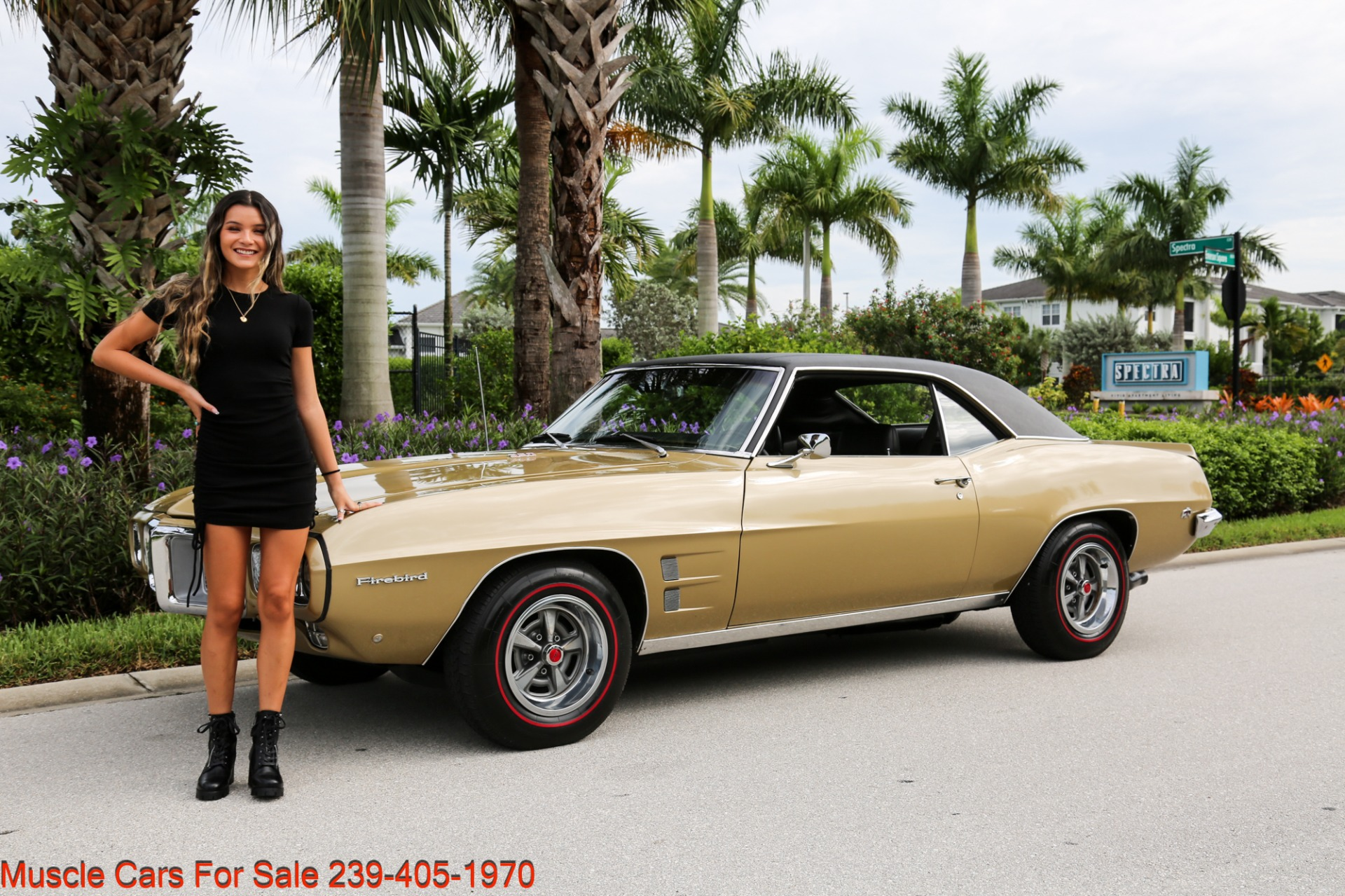 Used 1969 Pontiac Firebird V8 Auto for sale $27,900 at Muscle Cars for Sale Inc. in Fort Myers FL 33912 5