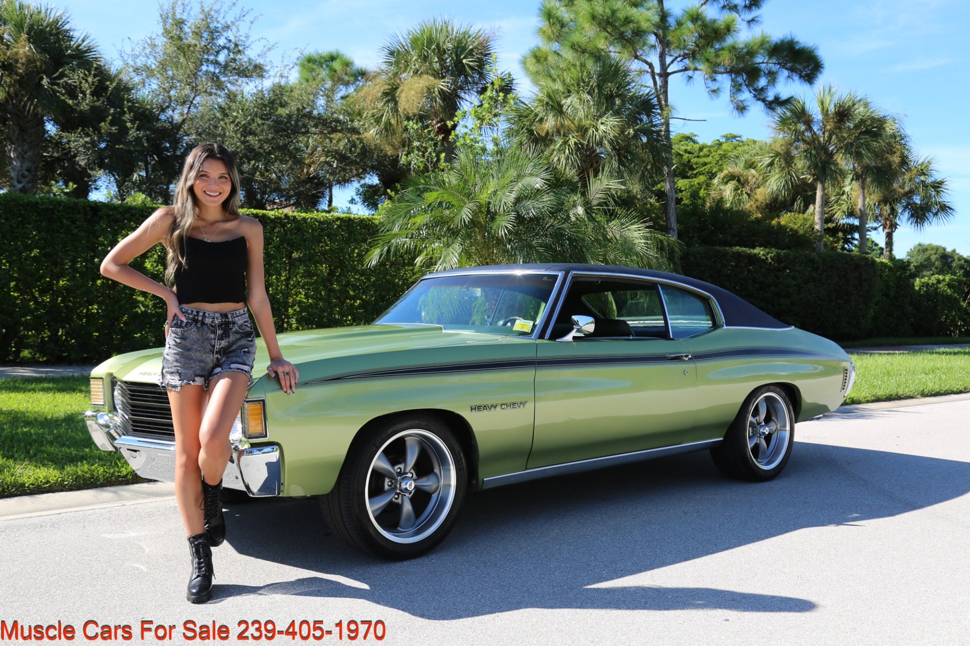 Used 1972 Chevrolet Chevelle Heavy Chevy Trim for sale $34,000 at Muscle Cars for Sale Inc. in Fort Myers FL 33912 2