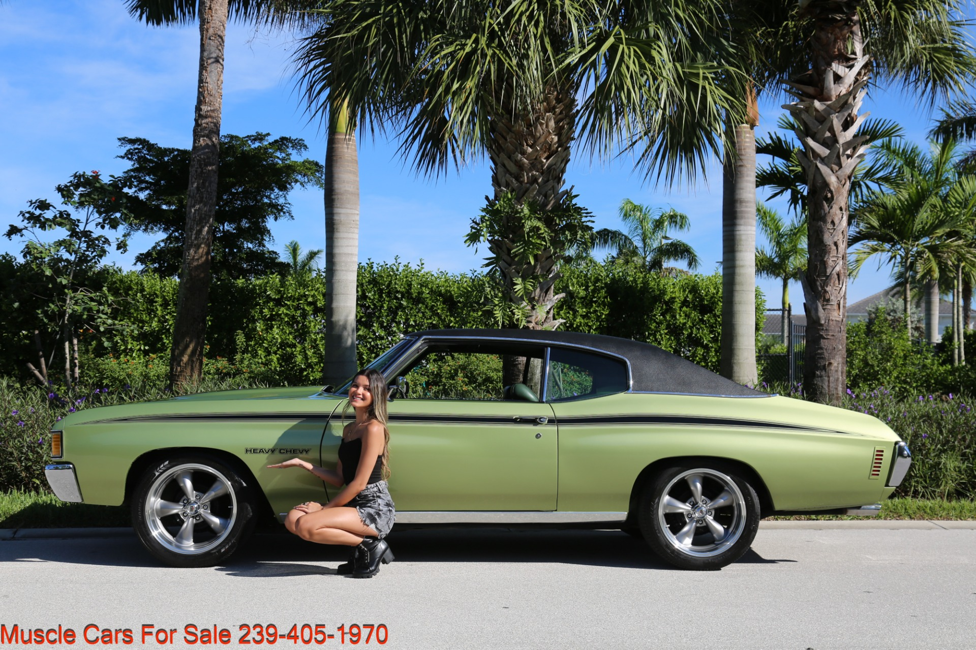 Used 1972 Chevrolet Chevelle Heavy Chevy Trim for sale $34,000 at Muscle Cars for Sale Inc. in Fort Myers FL 33912 5