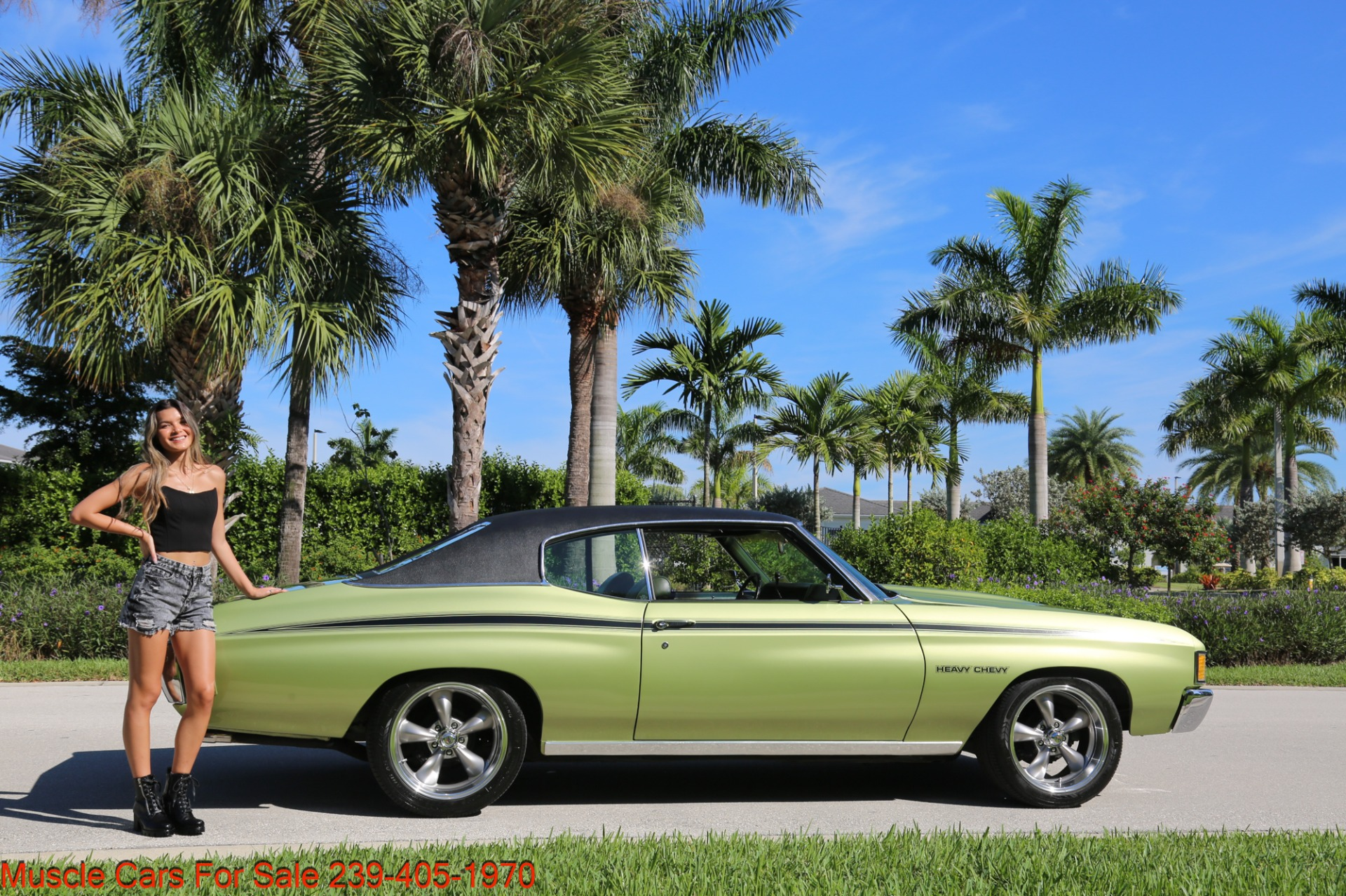 Used 1972 Chevrolet Chevelle Heavy Chevy Trim for sale $34,000 at Muscle Cars for Sale Inc. in Fort Myers FL 33912 6
