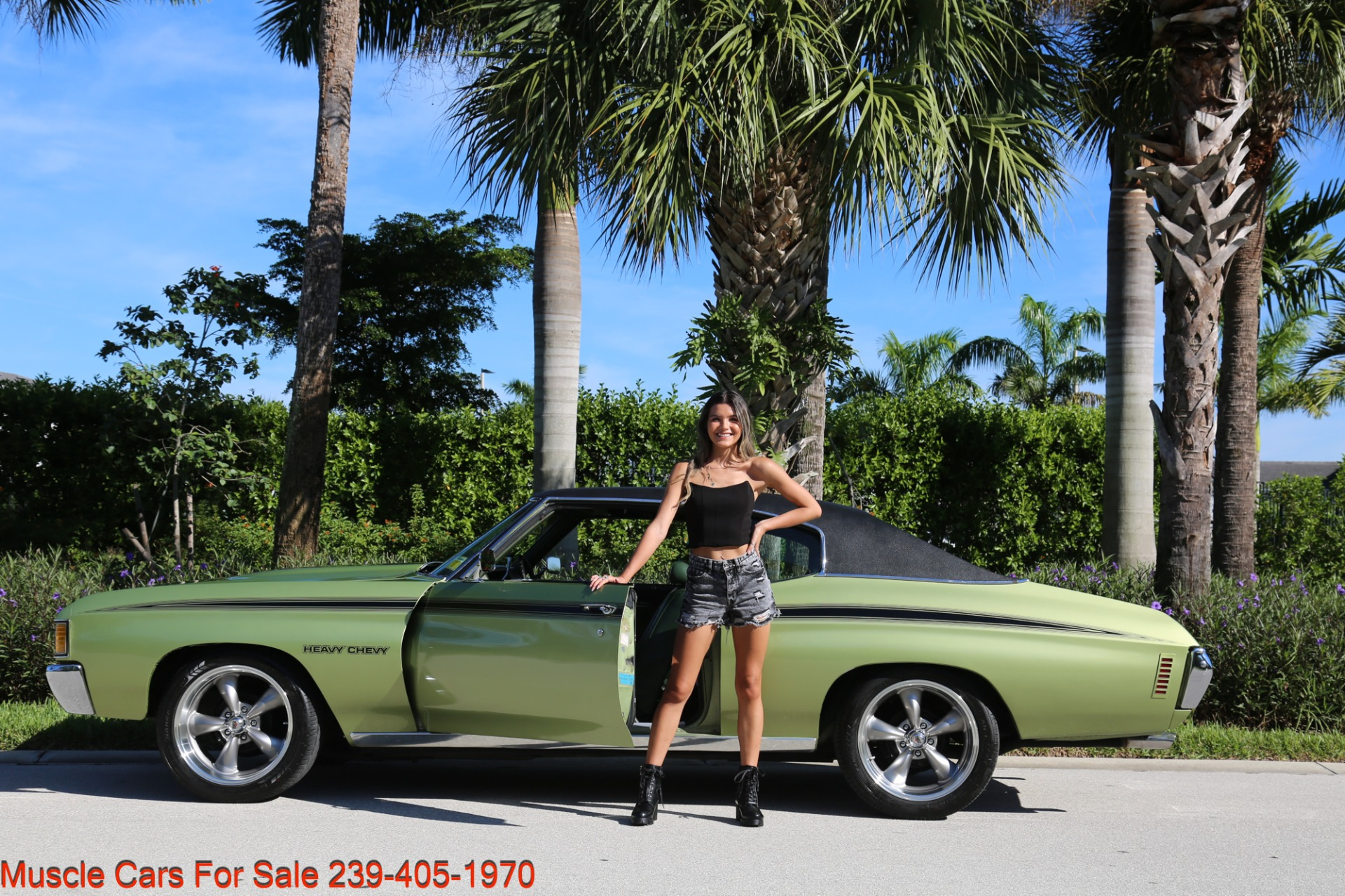 Used 1972 Chevrolet Chevelle Heavy Chevy Trim for sale $34,000 at Muscle Cars for Sale Inc. in Fort Myers FL 33912 8