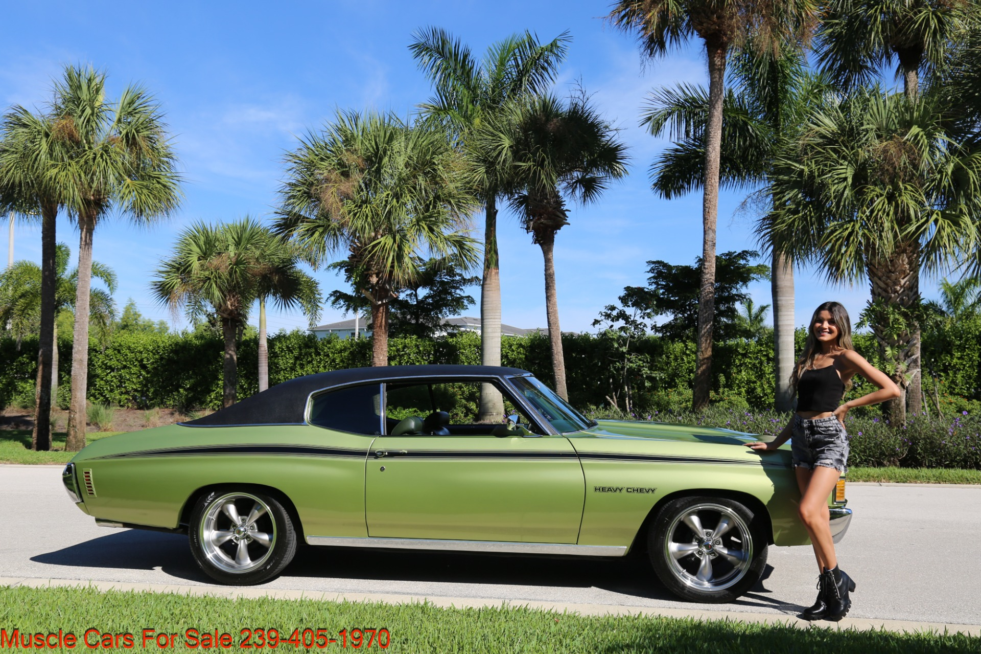 Used 1972 Chevrolet Chevelle Heavy Chevy Trim for sale $34,000 at Muscle Cars for Sale Inc. in Fort Myers FL 33912 1